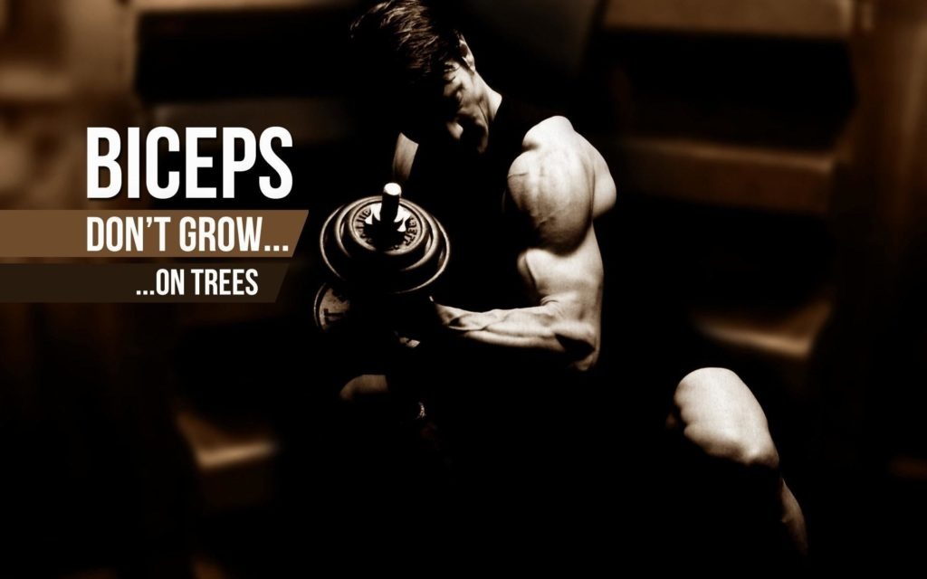 wallpaper.wiki-Bodybuilding-Pictures-HD-PIC-WPE0011565