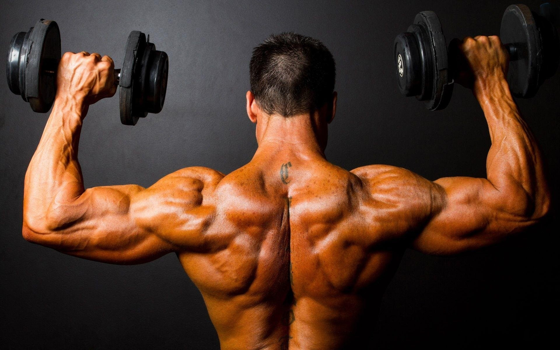 Top 15 Weight Lifting Wallpapers