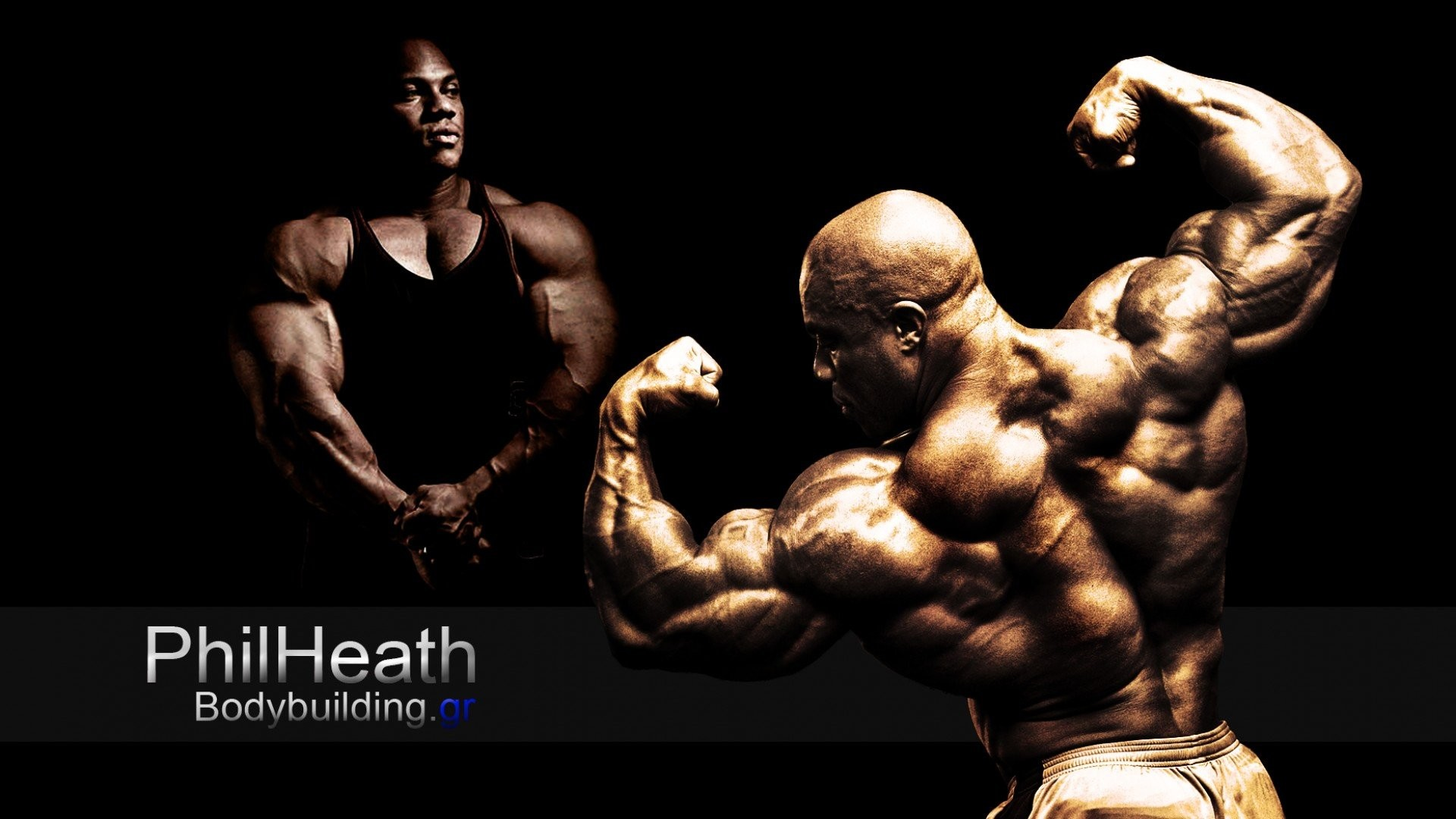Body-building fitness muscle muscles weight lifting Bodybuilding (70)  wallpaper | | 415591 | WallpaperUP