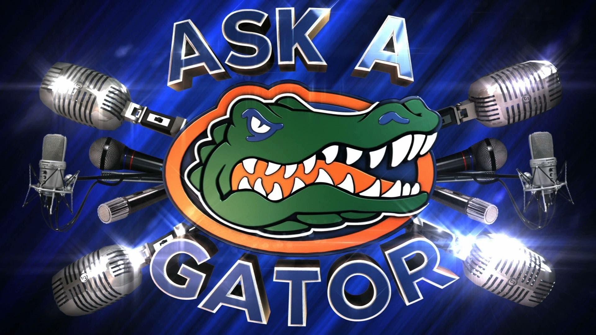 … florida gators backgrounds pixelstalk net …