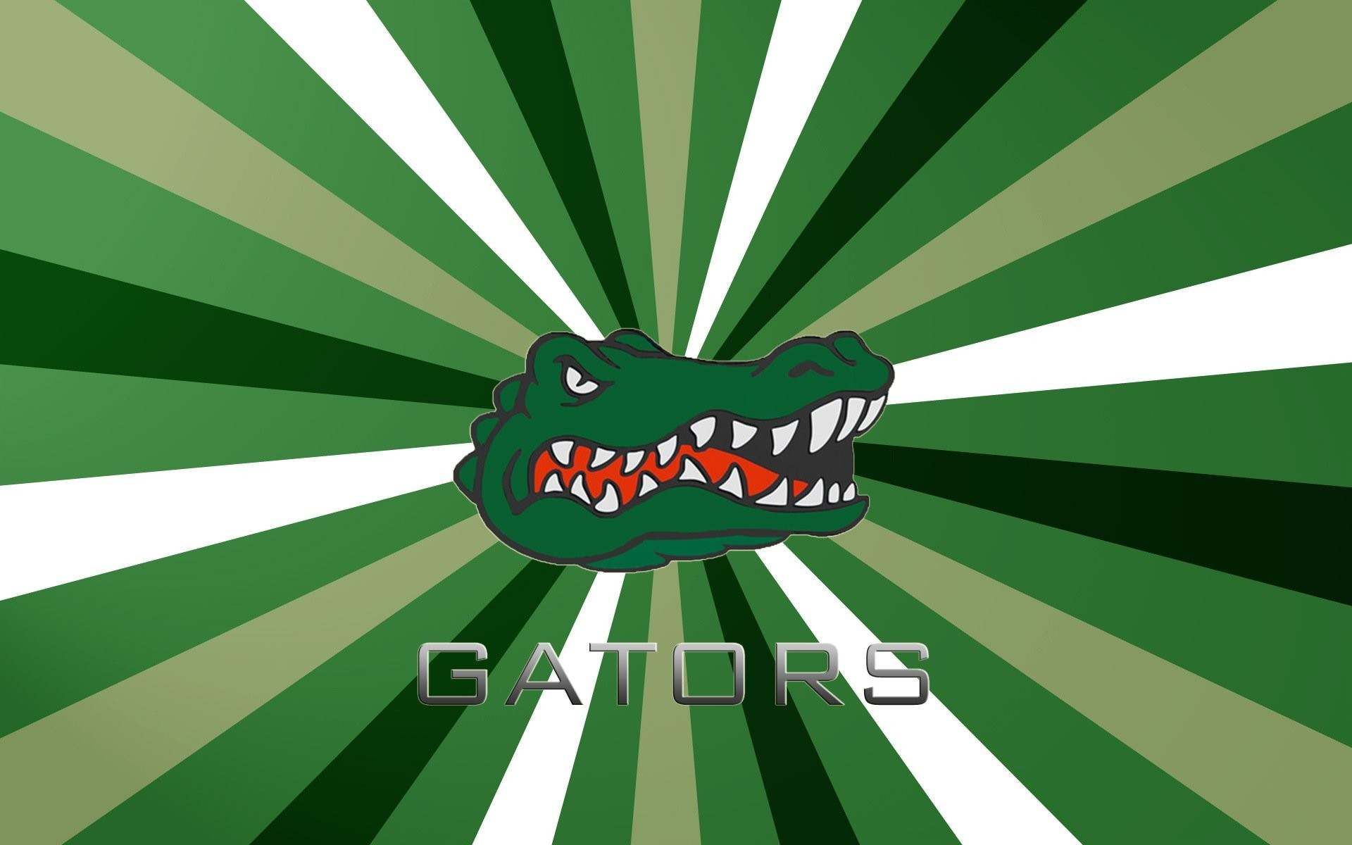 Florida Gators 650750