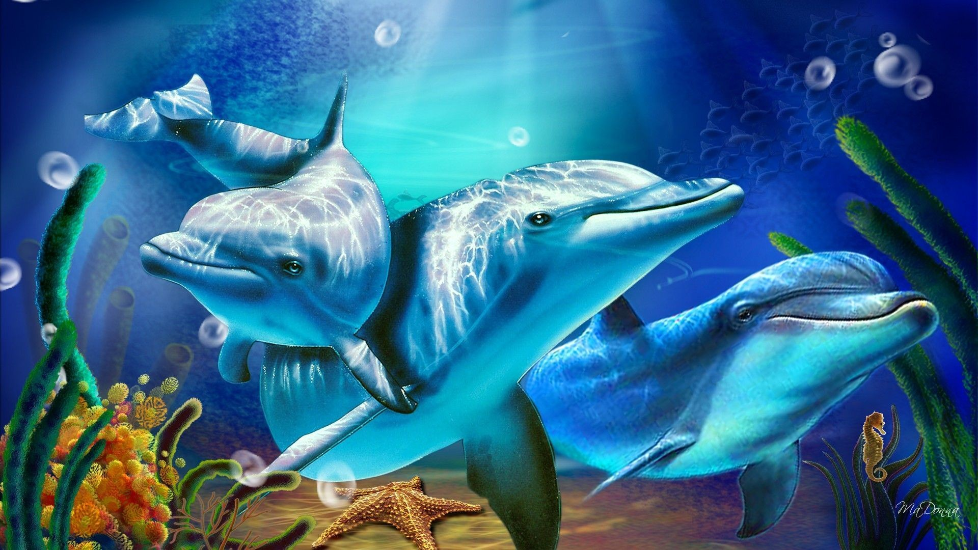 Dolphins Wallpapers Wallpaper 1920×1080 Dolphin Pictures Wallpapers (39  Wallpapers) | Adorable Wallpapers