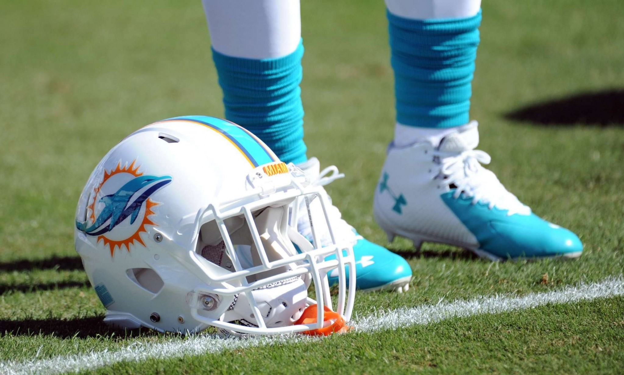 miami dolphins hd widescreen wallpapers backgrounds