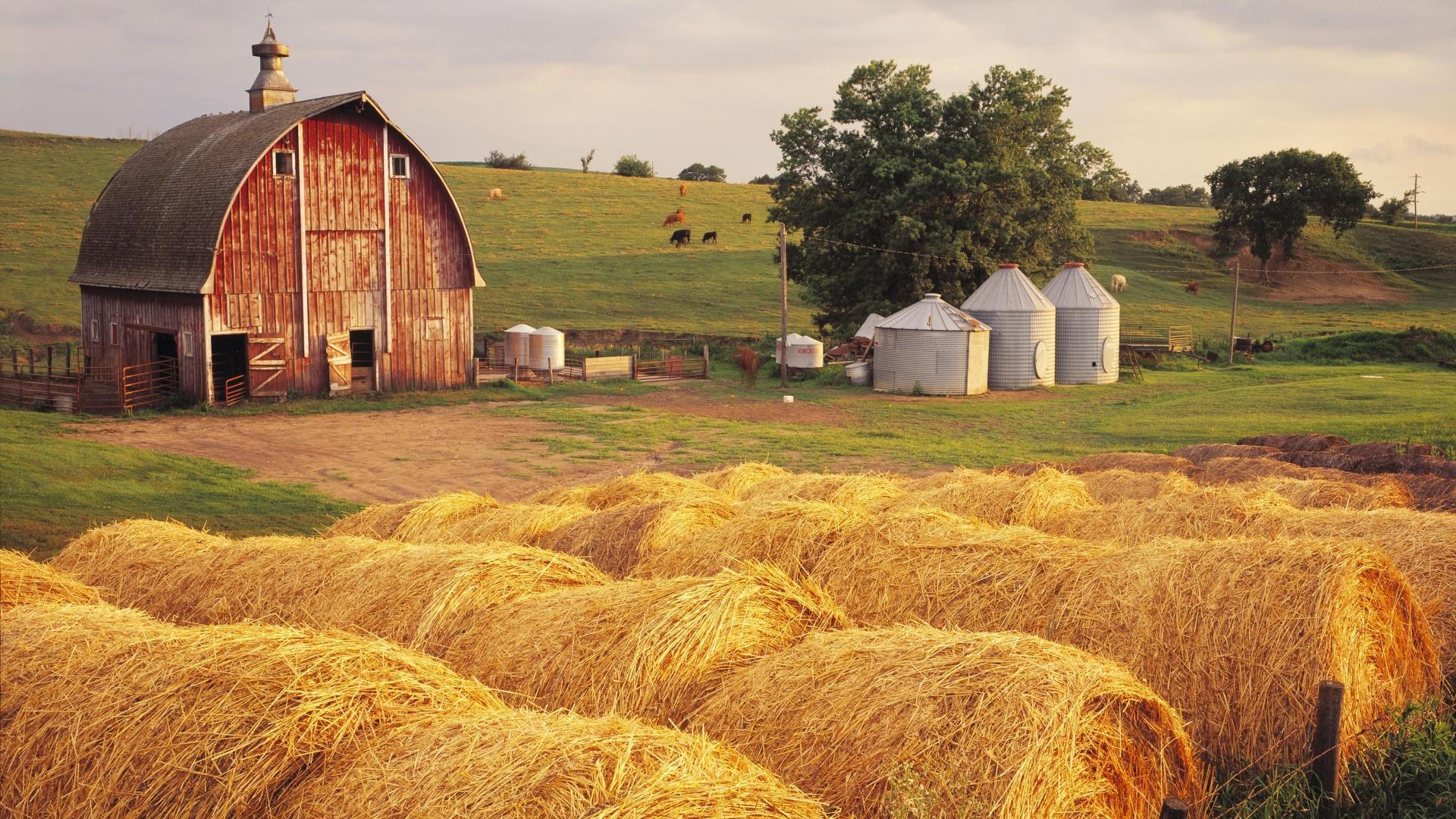 Hay Iowa Wallpaper Hay, Iowa