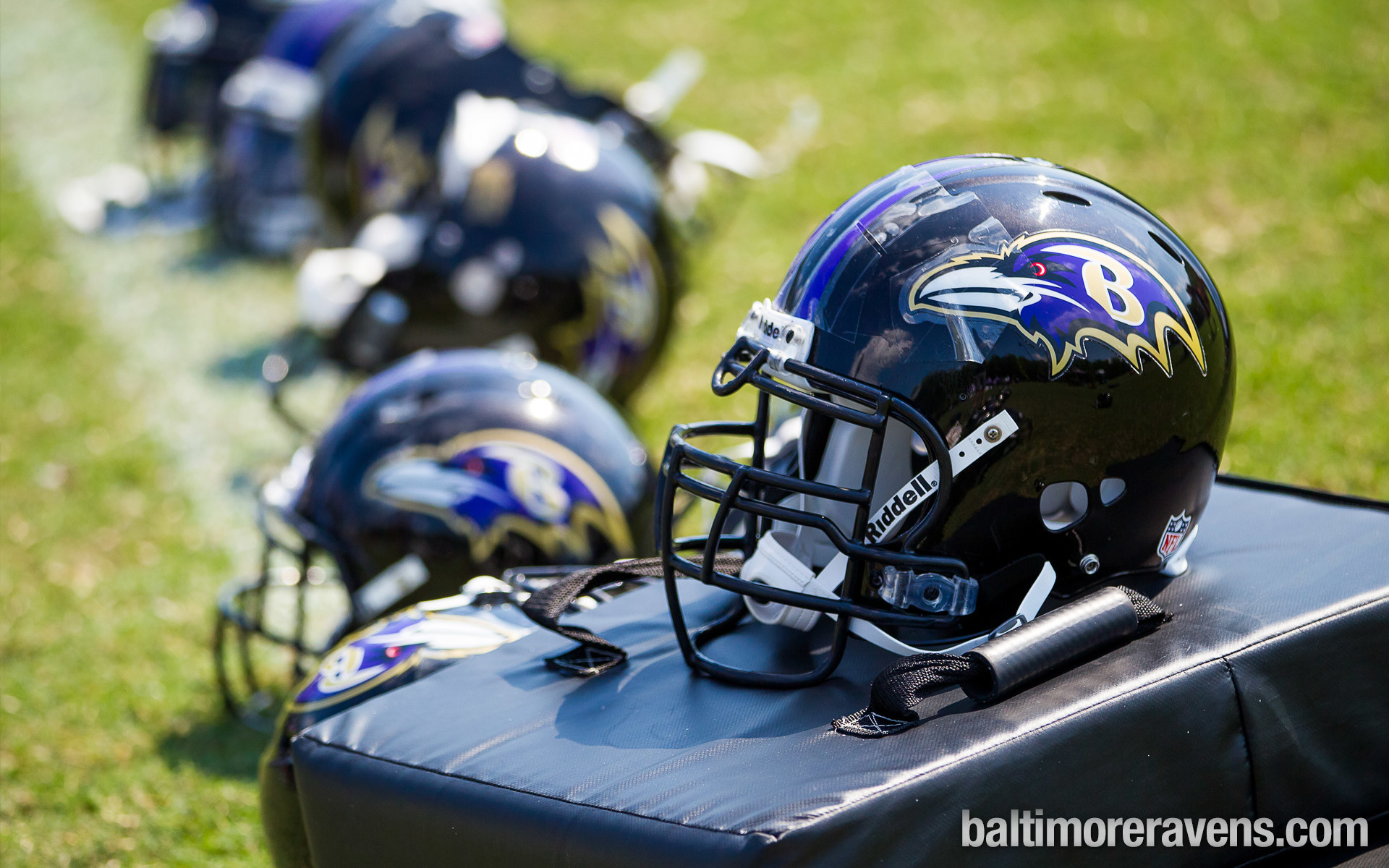 Baltimore Ravens   Ravenstown   Downloads