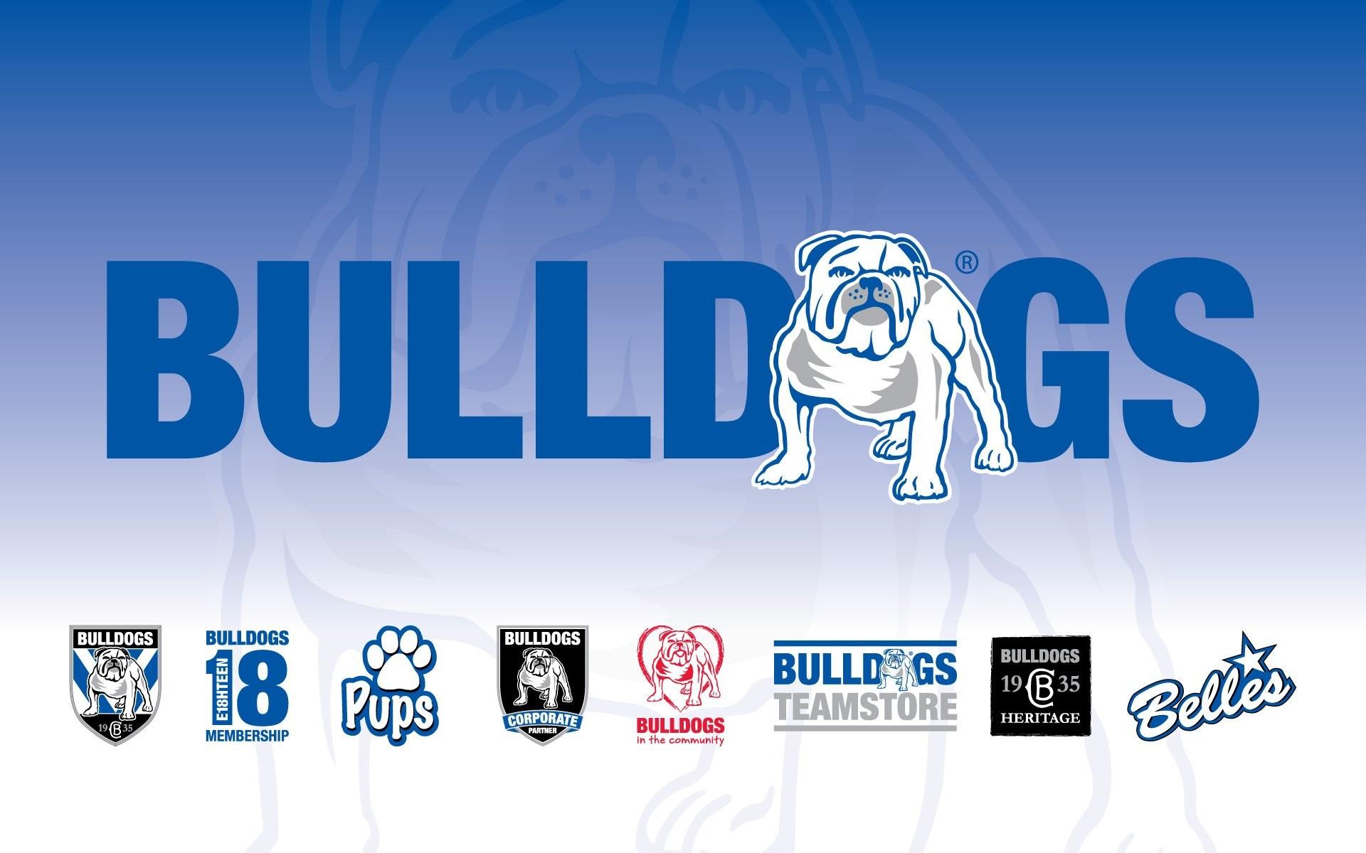 Home · Wallpapers; Canterbury Bulldogs. canterbury bulldogs Canterbury  Bulldogs