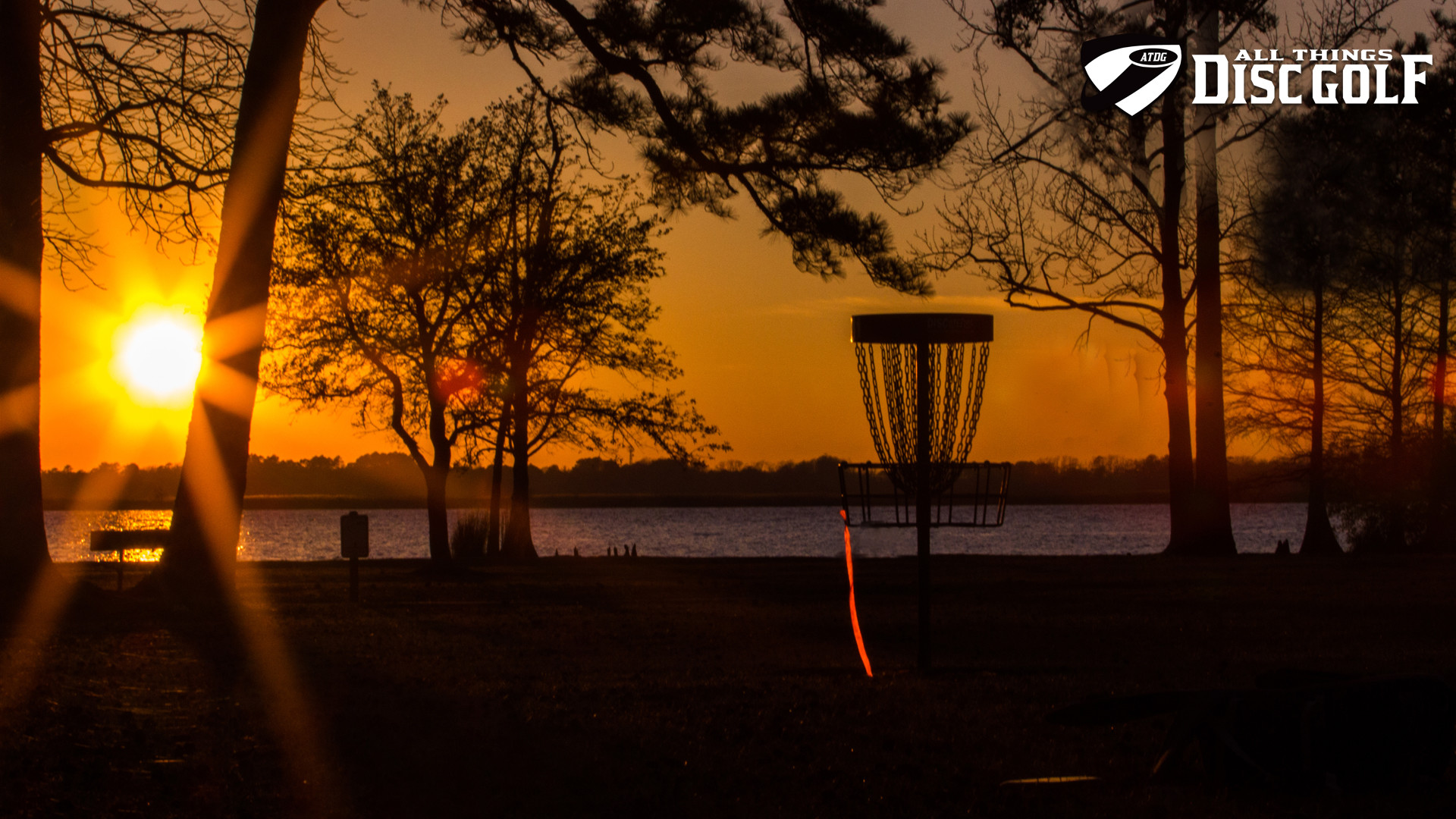 Disc Golf. Backgrounds of Disc Golf in High Definition. 1.512 MB