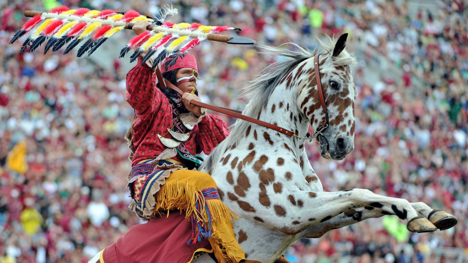 Florida State Seminoles Tailgating Tradition   CampusInsiders – YouTube