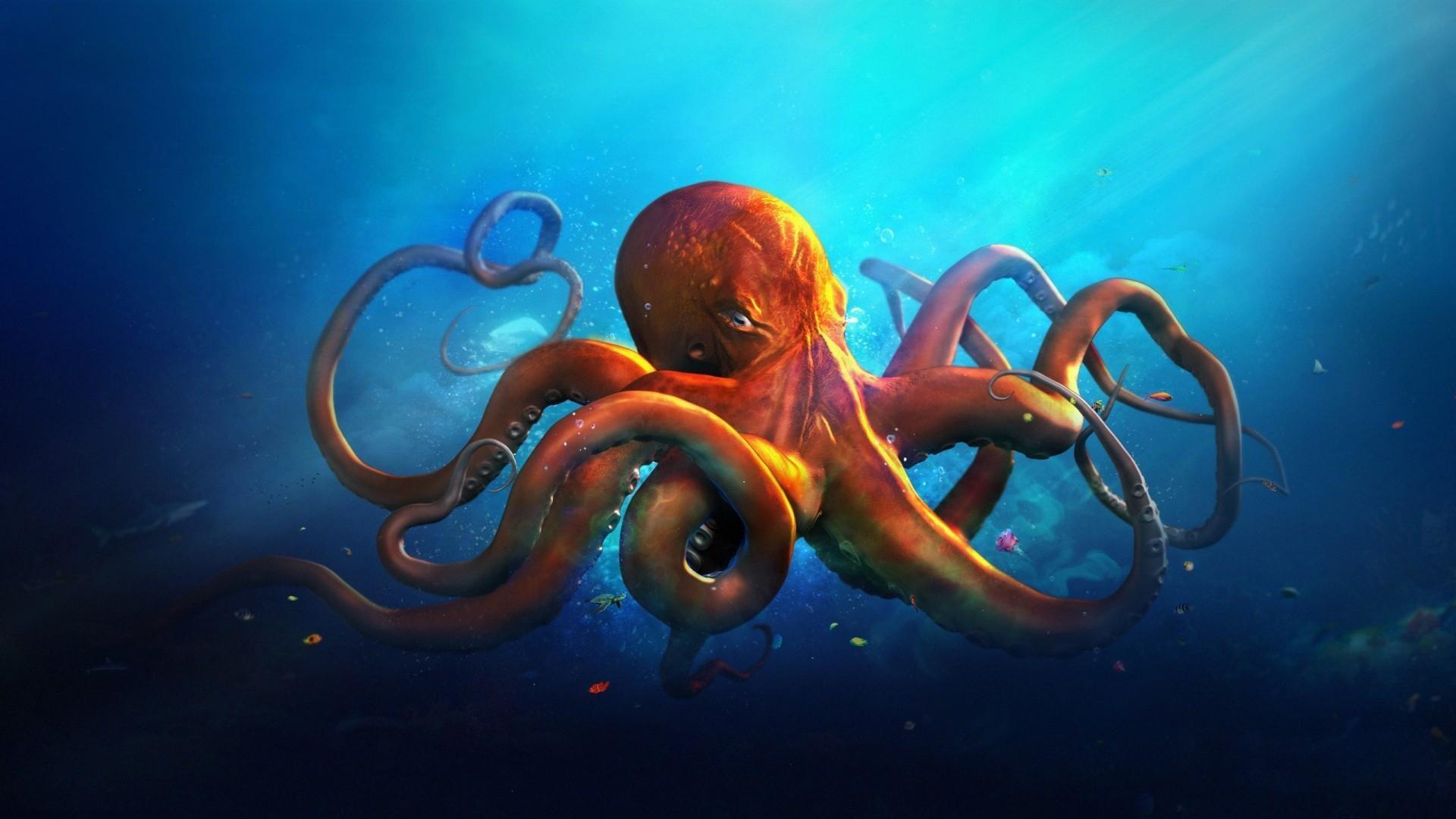 An-orange-octopus-in-blue-sea-water-Landscape-