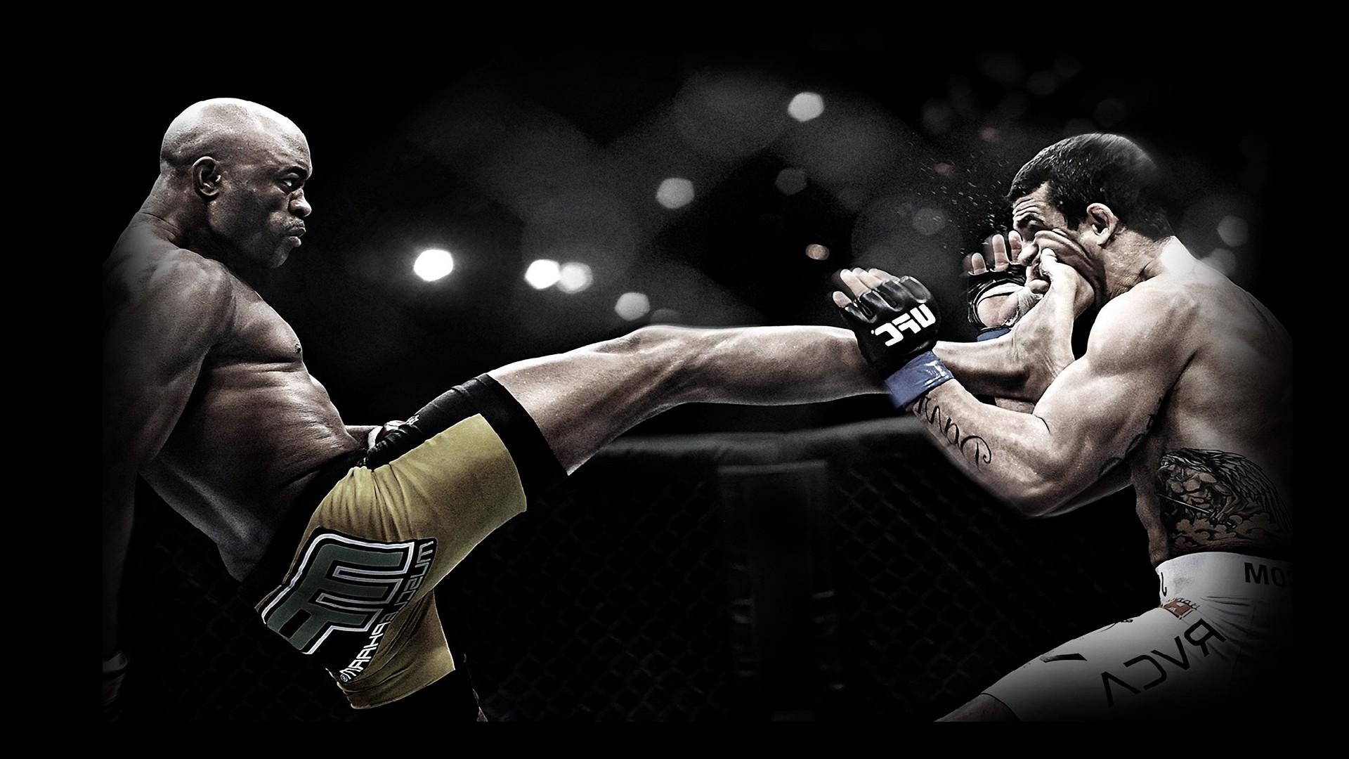 Category : Mixed Wallpapers » MMA Awsome Kick -px
