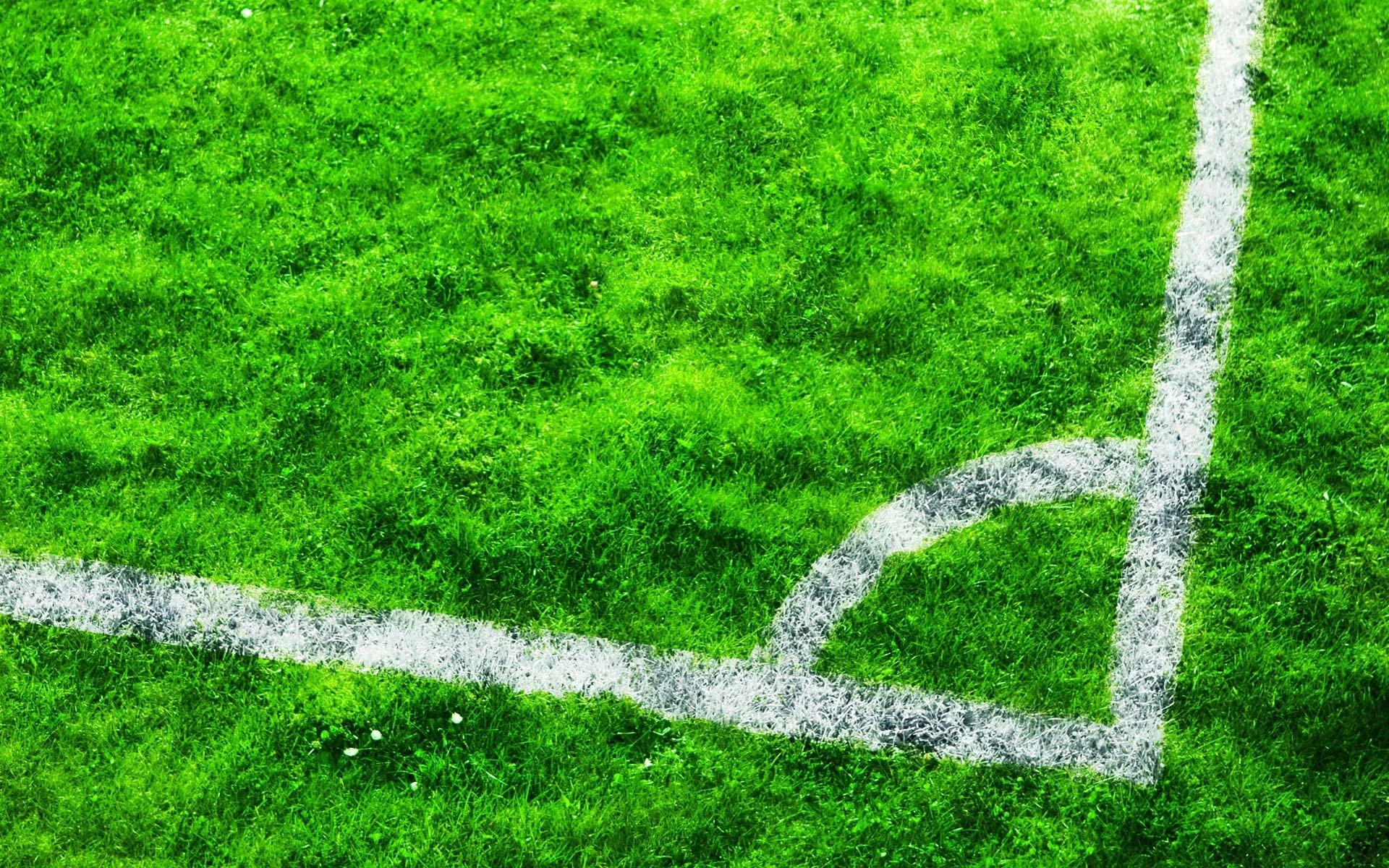 Football Stadium Grass Wallpaper