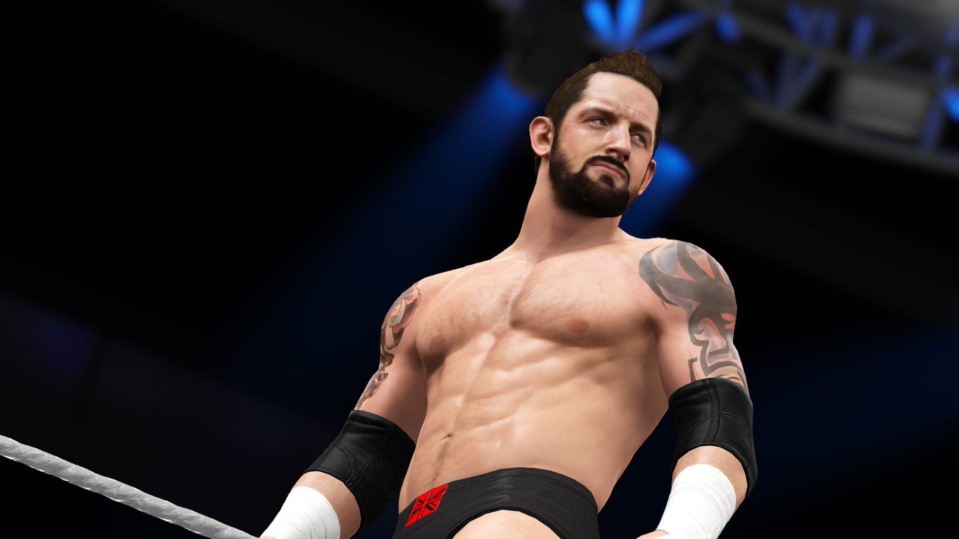 WWE 2K16 Wallpapers HD. Pictures of WWE 2K16