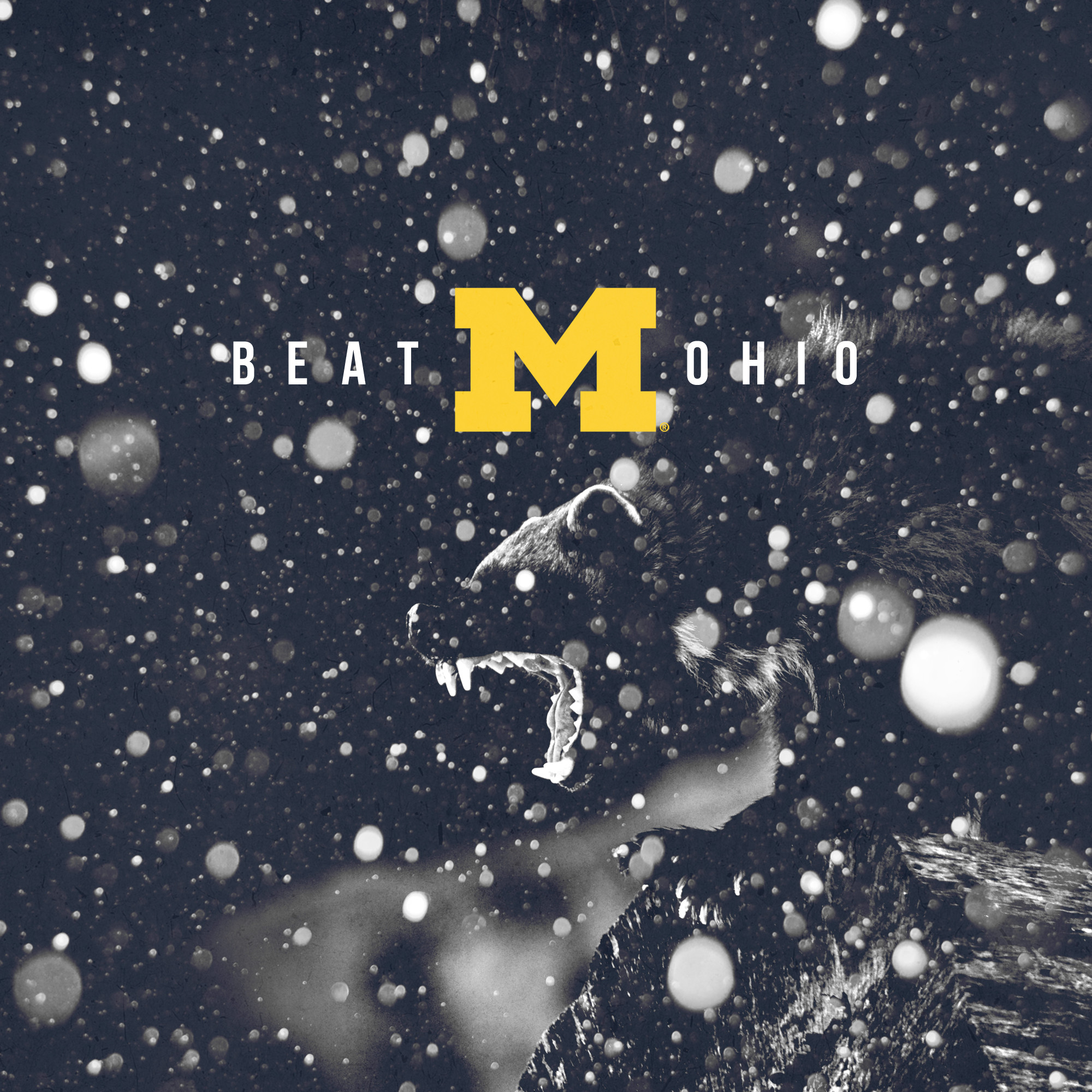 Go Blue – Beat Ohio – square format