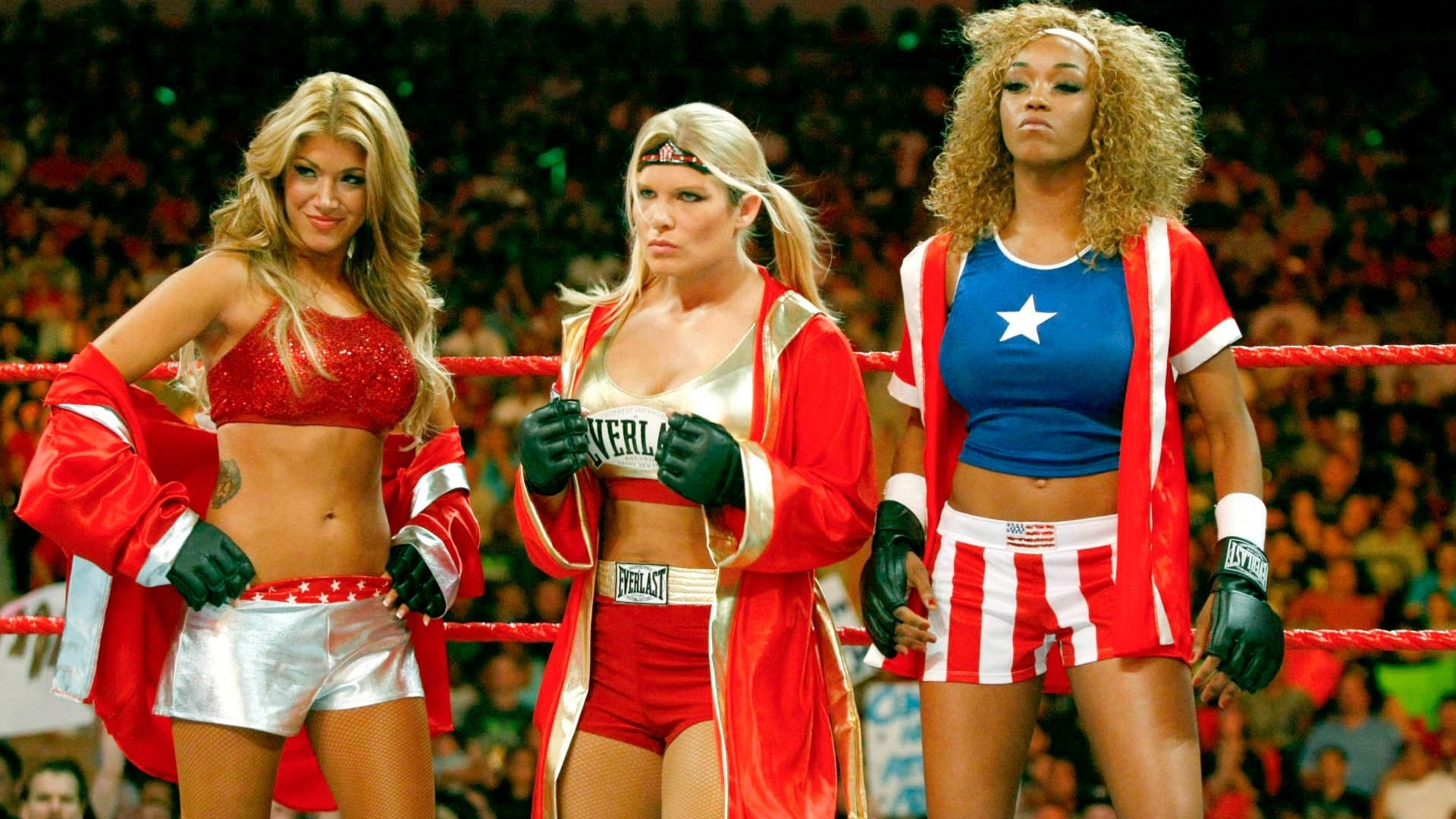Hottest Wwe Divas Of All Time …