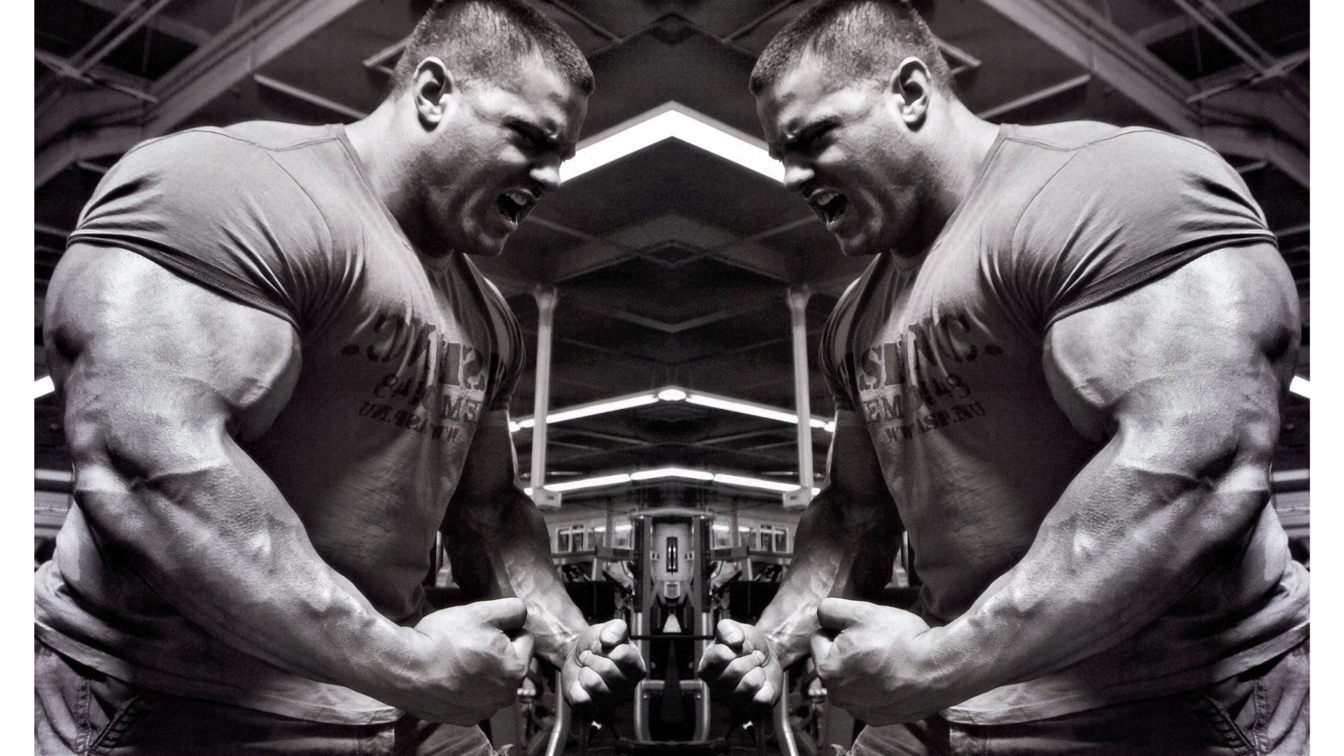 Collection of Bodybuilder Wallpaper on HDWallpapers 1920×1200 Wallpapers  Bodybuilding (58 Wallpapers)  