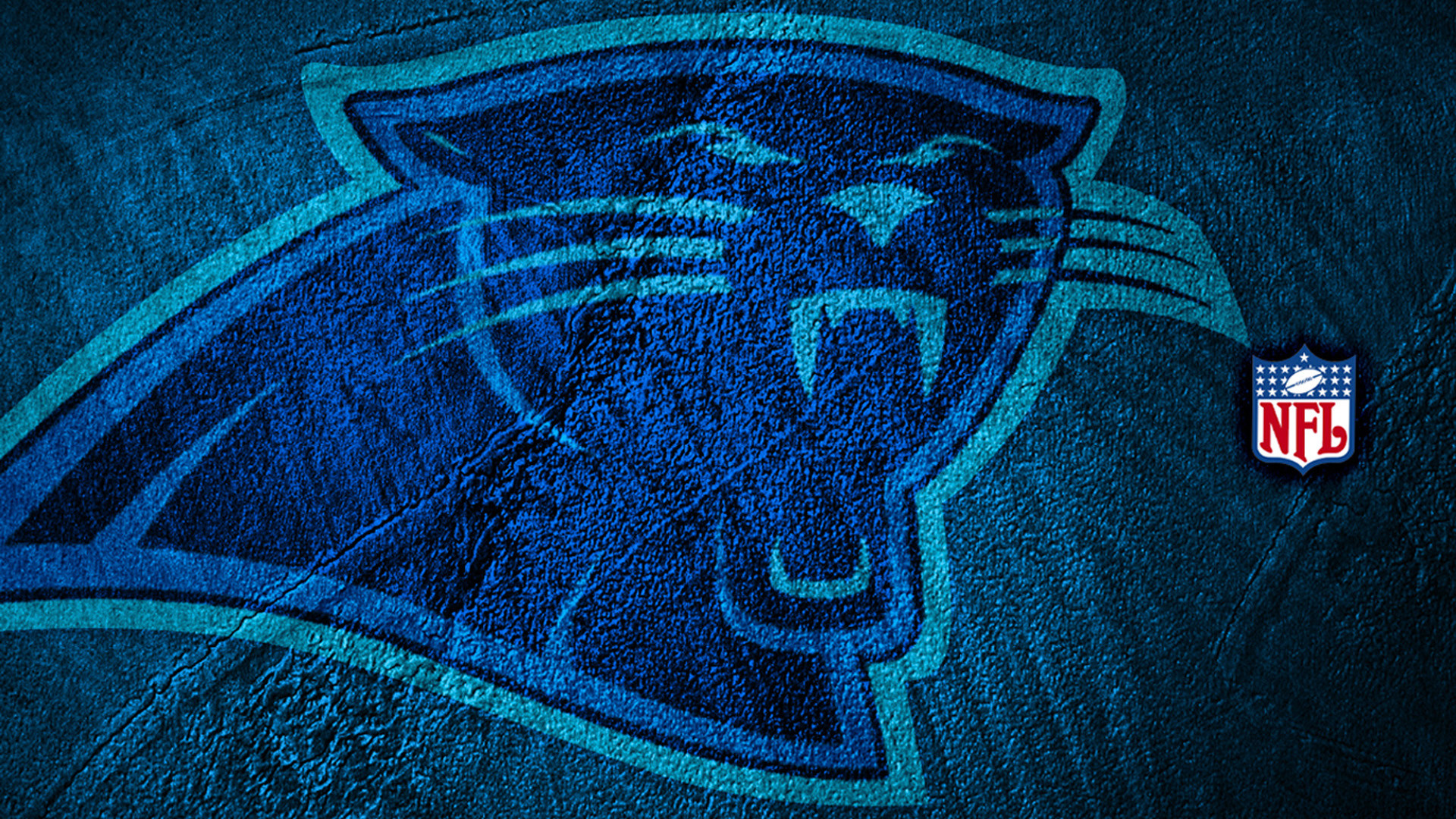 33 Carolina Panthers HD Wallpapers   Backgrounds – Wallpaper Abyss
