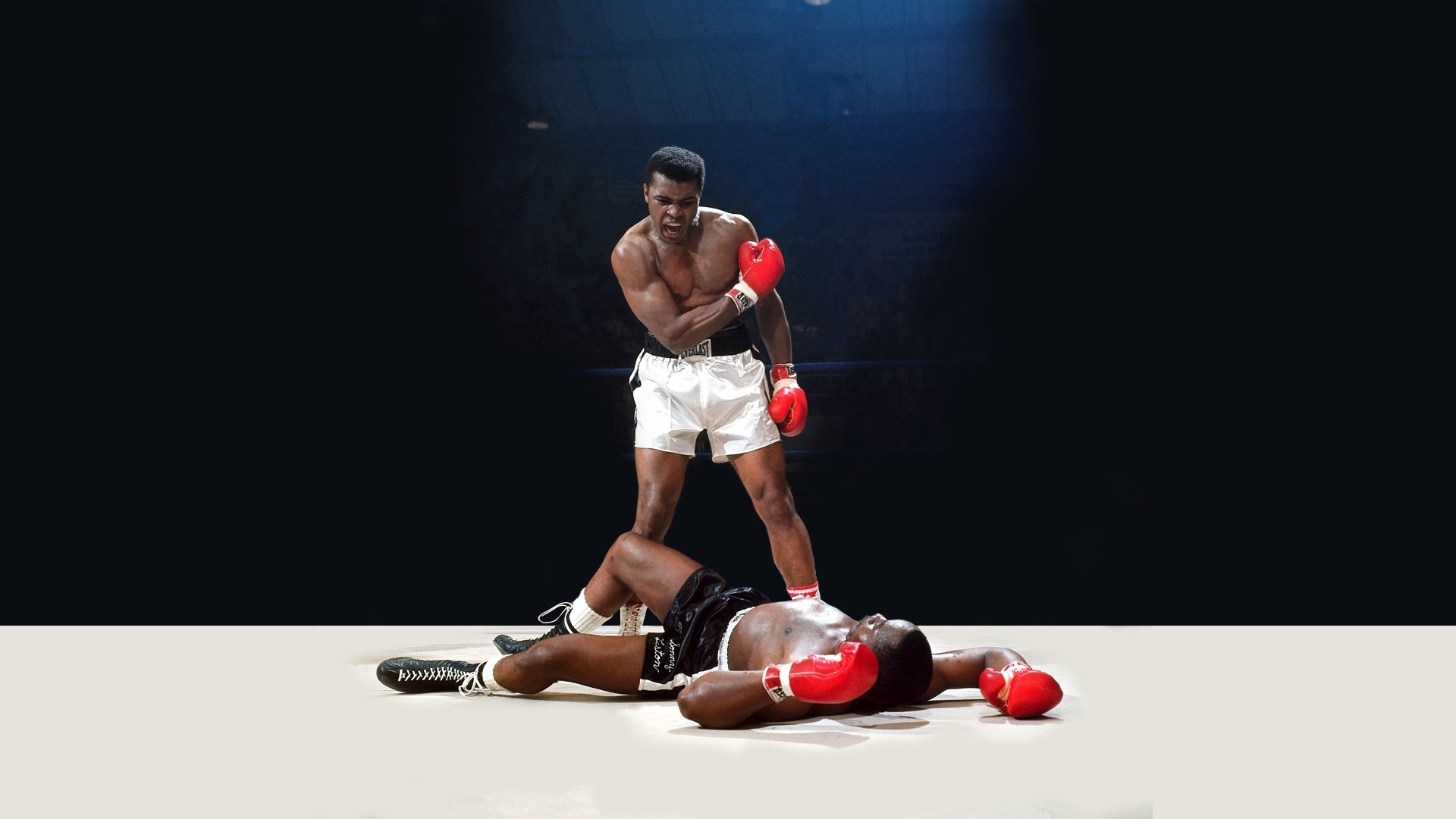 HD Wallpaper | Background ID:237229. Sports Boxing