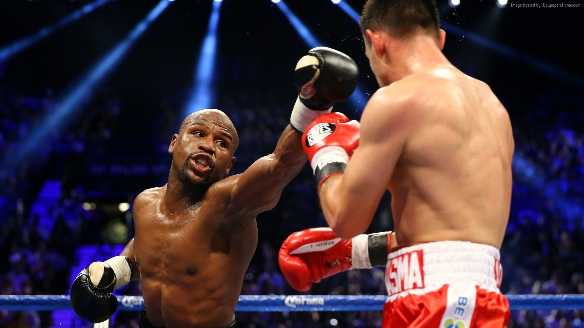 Boxing Wallpapers HD Desktop Backgrounds Images and Pictures