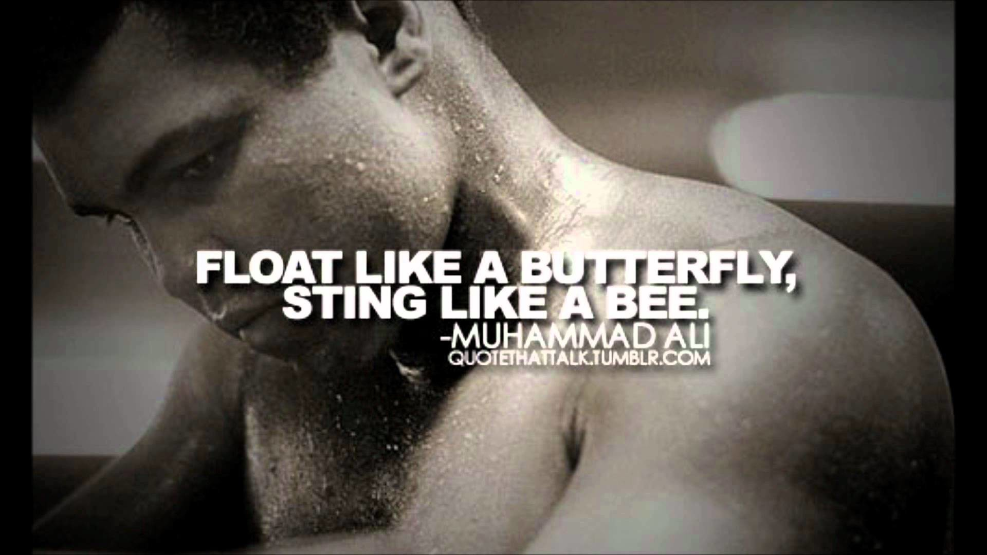 Tribute to the greatest king of boxing Muhammad Ali (Picture artshow) –  YouTube