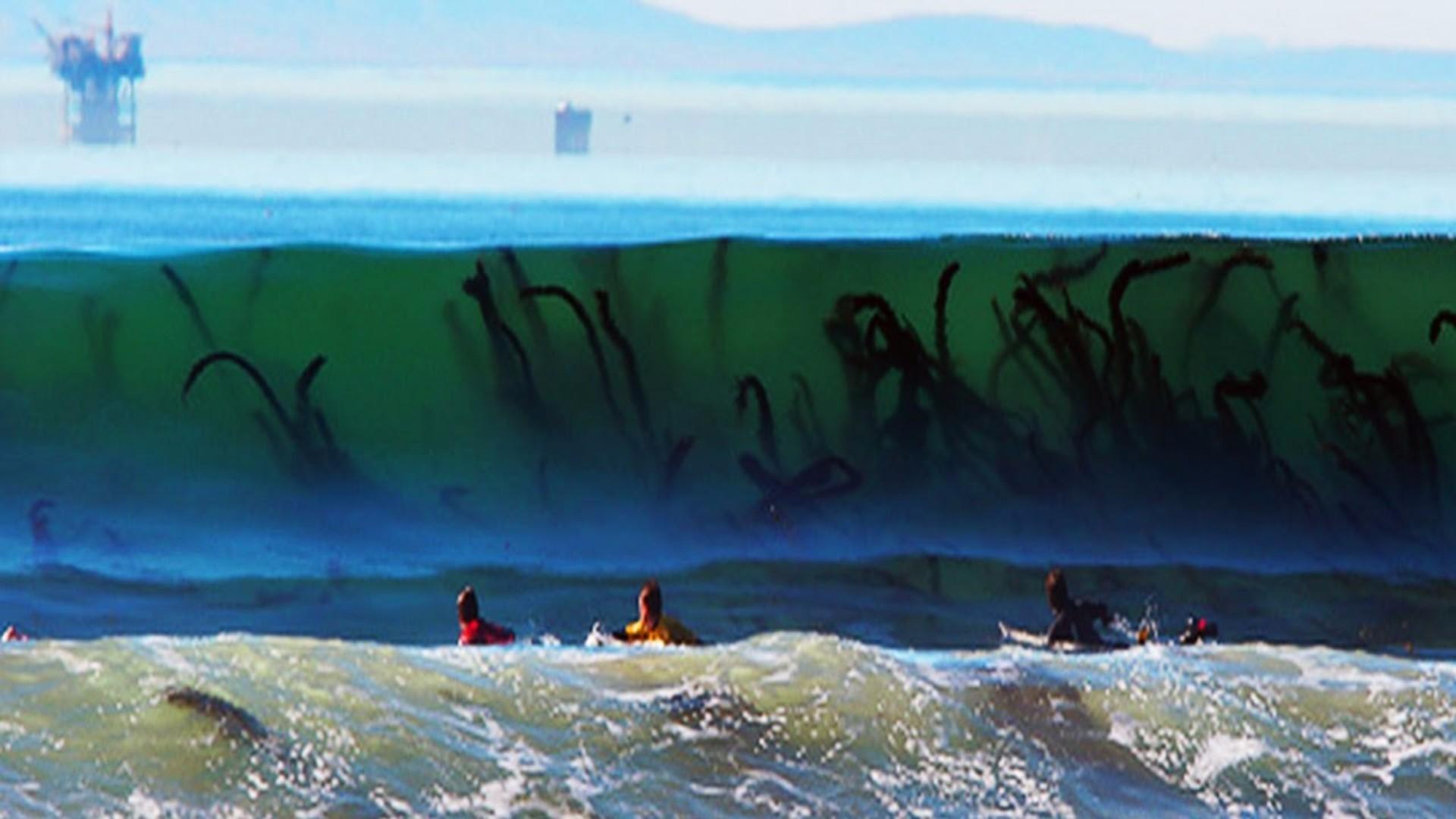 Surfing HD Wallpaper