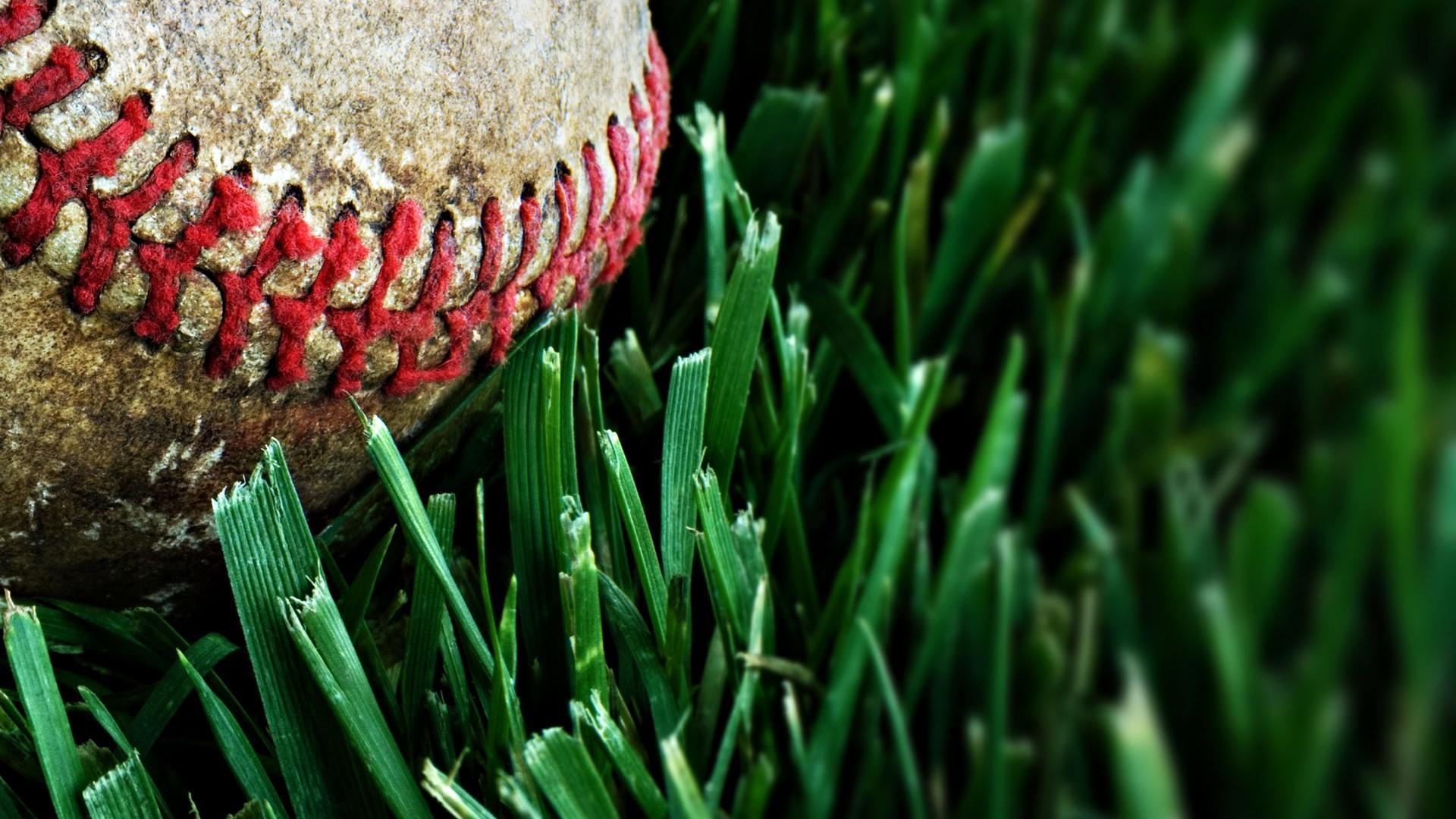Baseball Macro HD