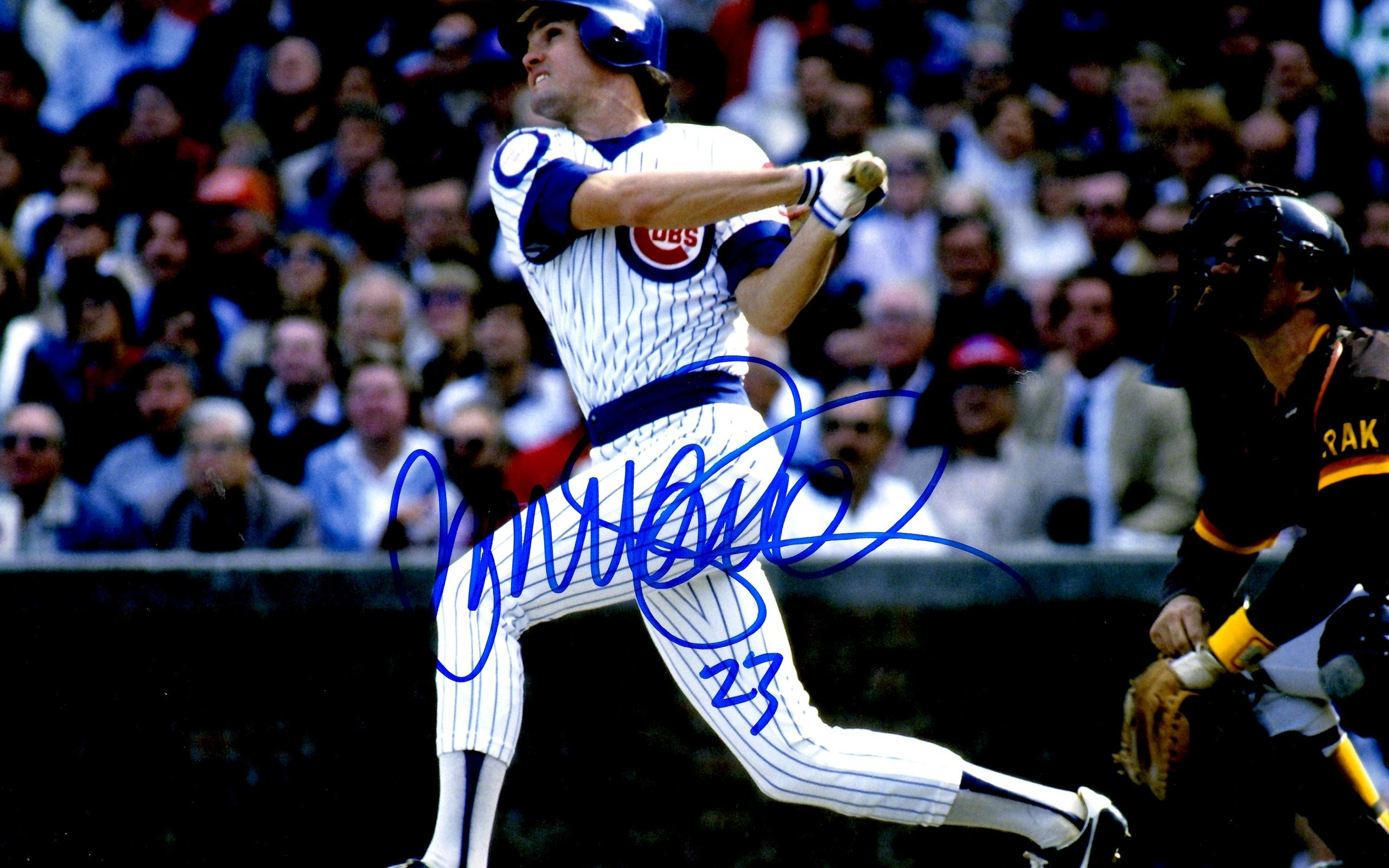Chicago Cubs Mlb The Baseball Player, Mlb, Sports, The Batter, Chicago Cubs