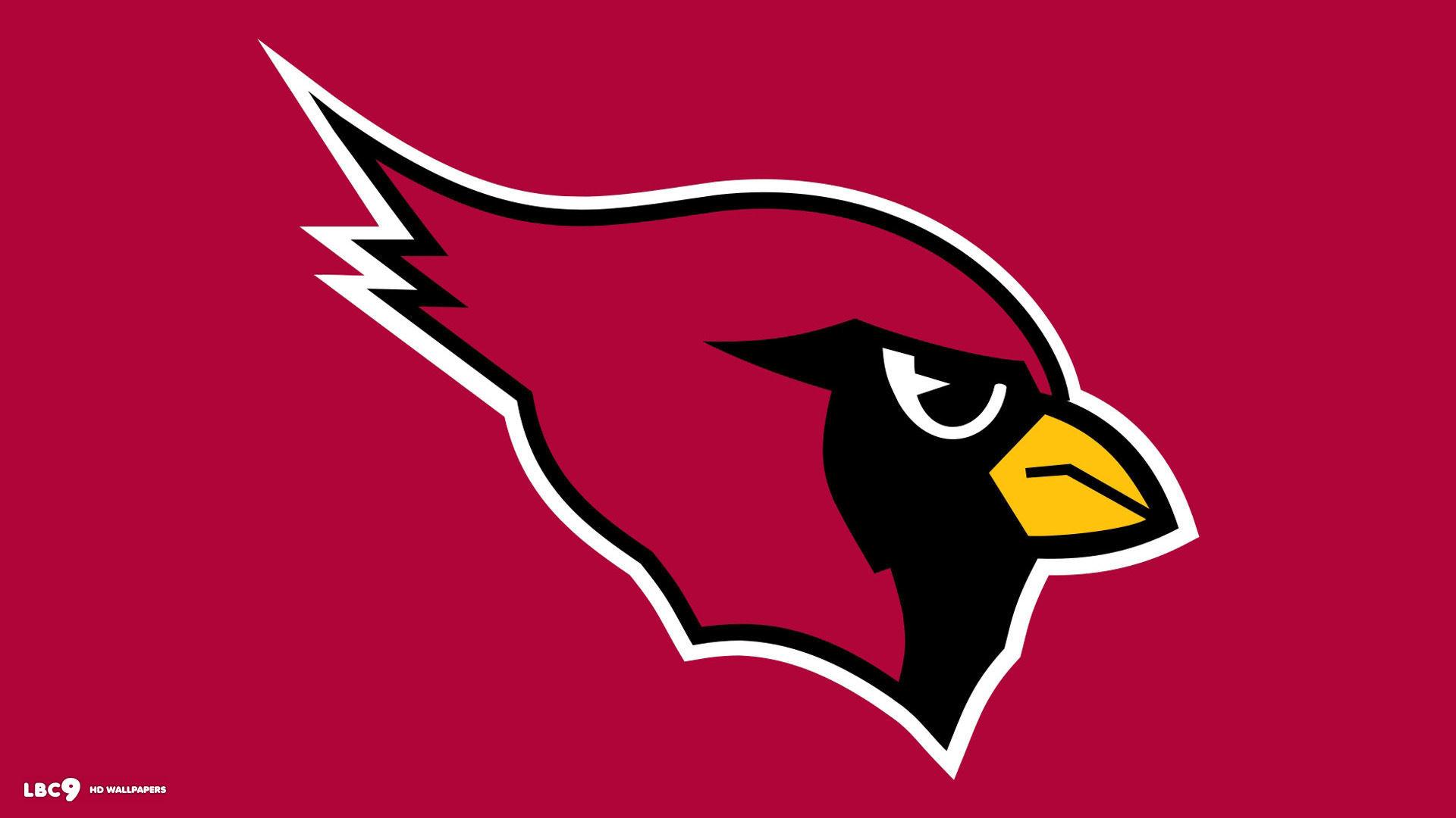 Cardinals Football Team