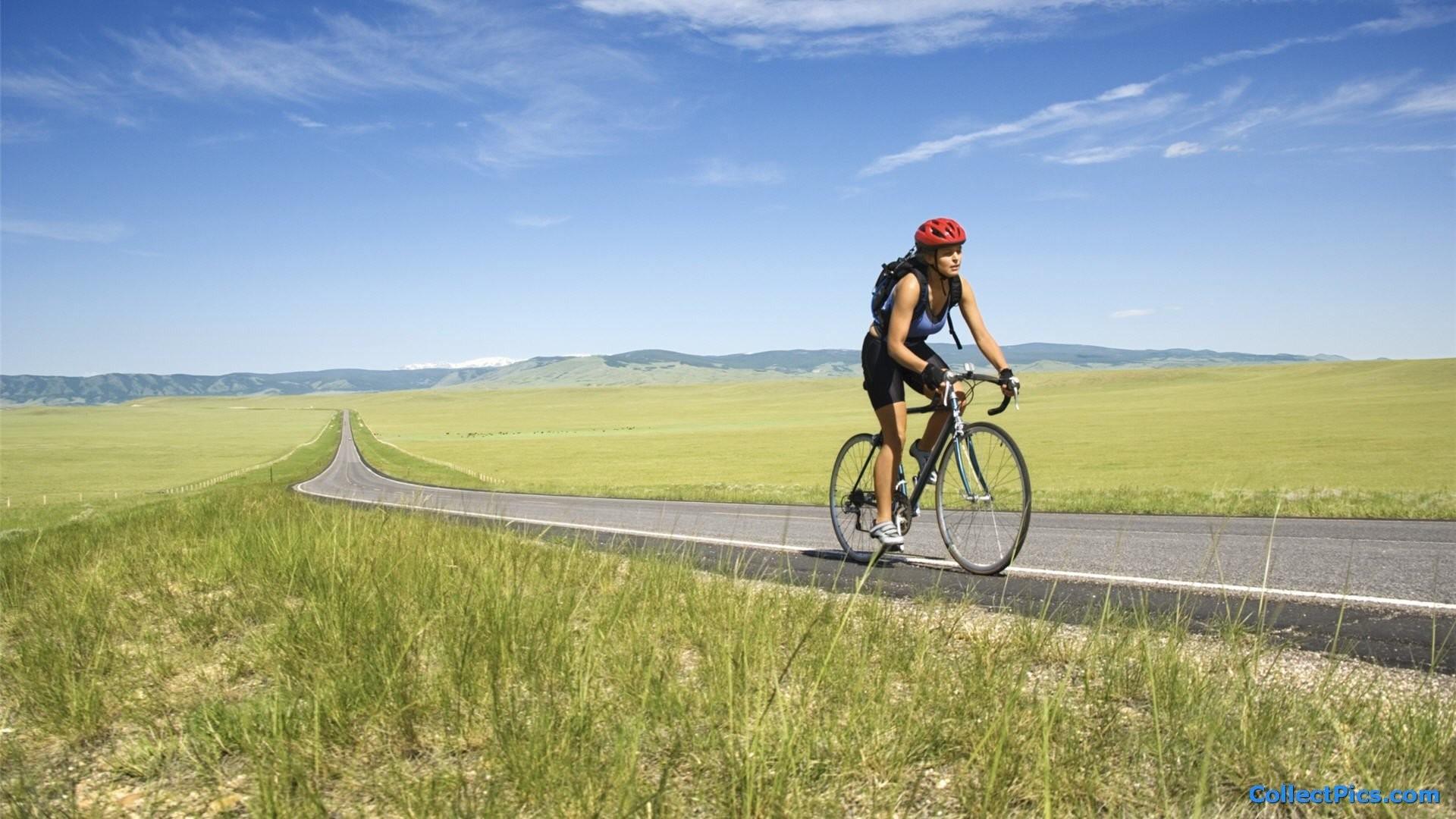 Road Bike 519355 Walldevil