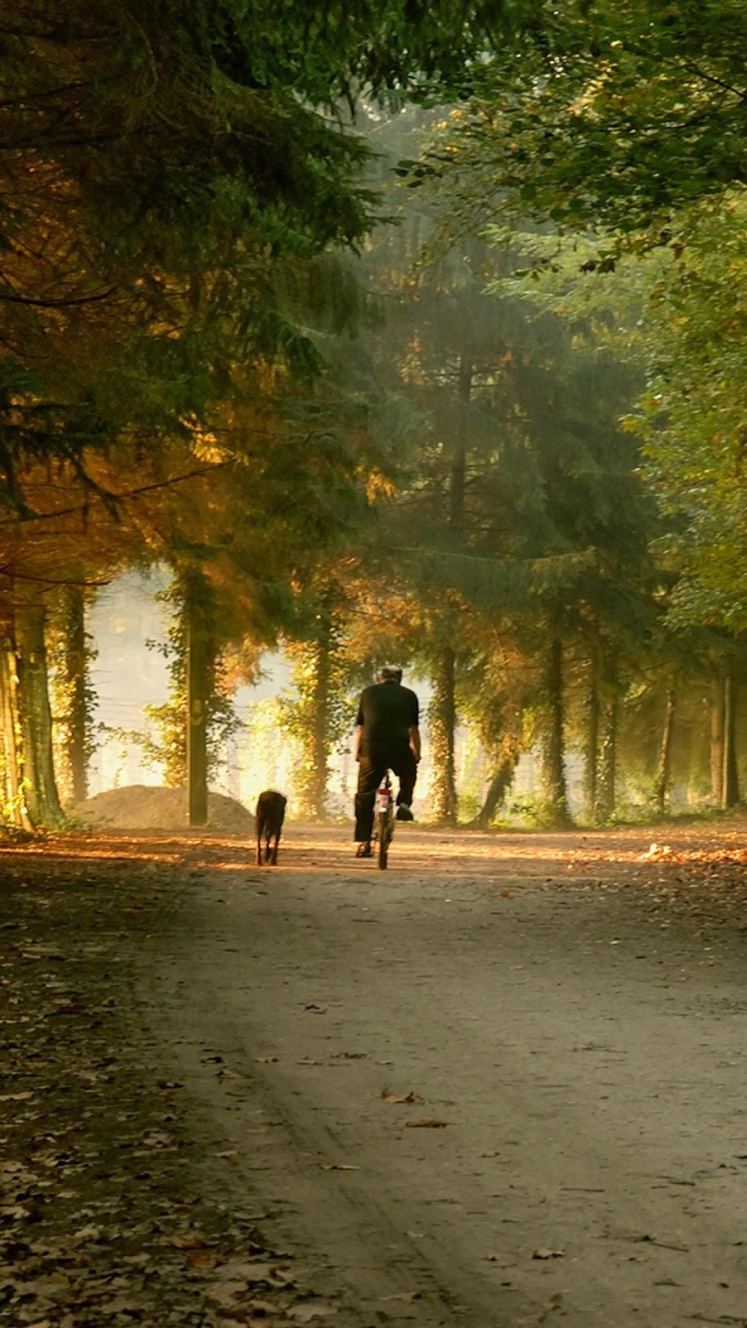 Preview wallpaper park, road, bike, skate, fall 1080×1920