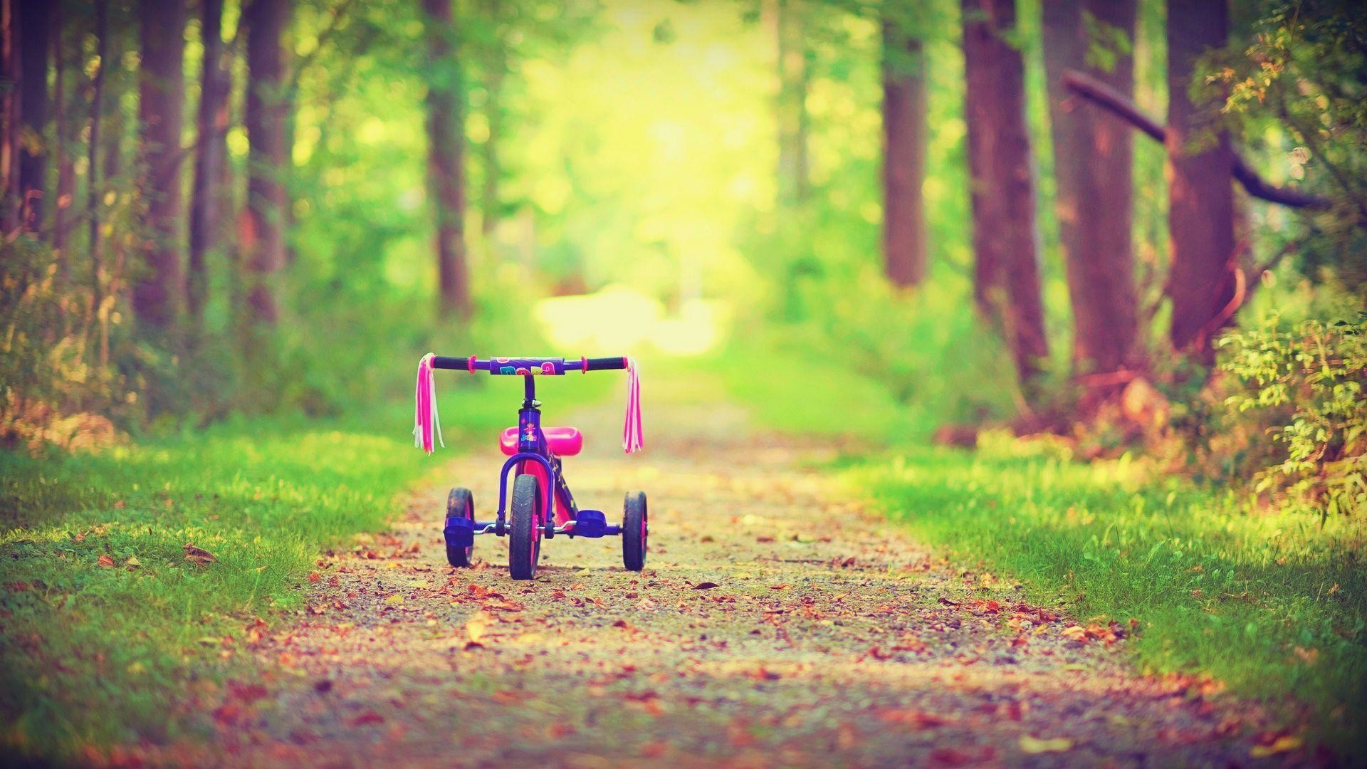 wallpaper.wiki-Small-Bicycle-Photo-PIC-WPB008708