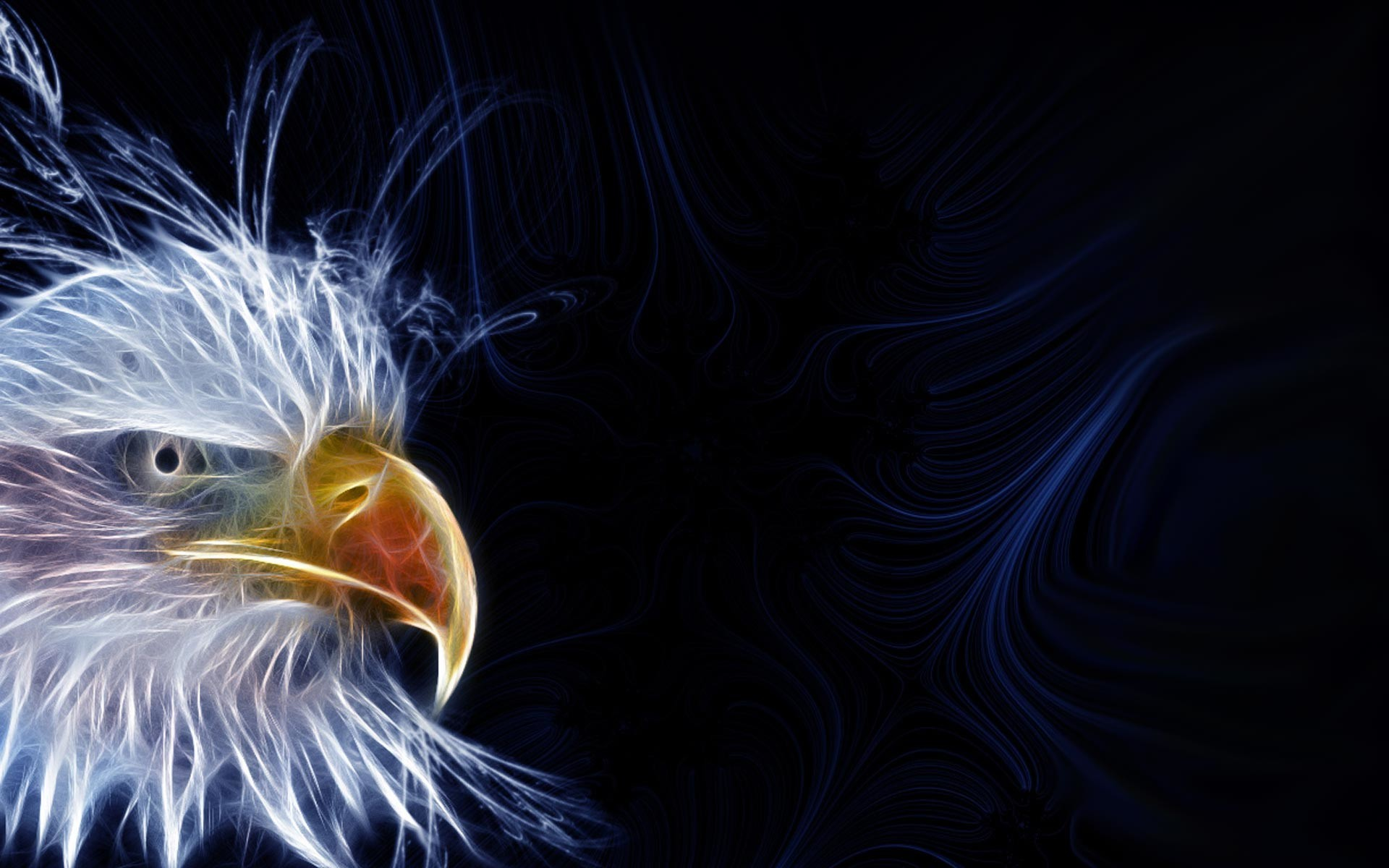 Bald Eagle HD Wallpapers THIS Wallpaper