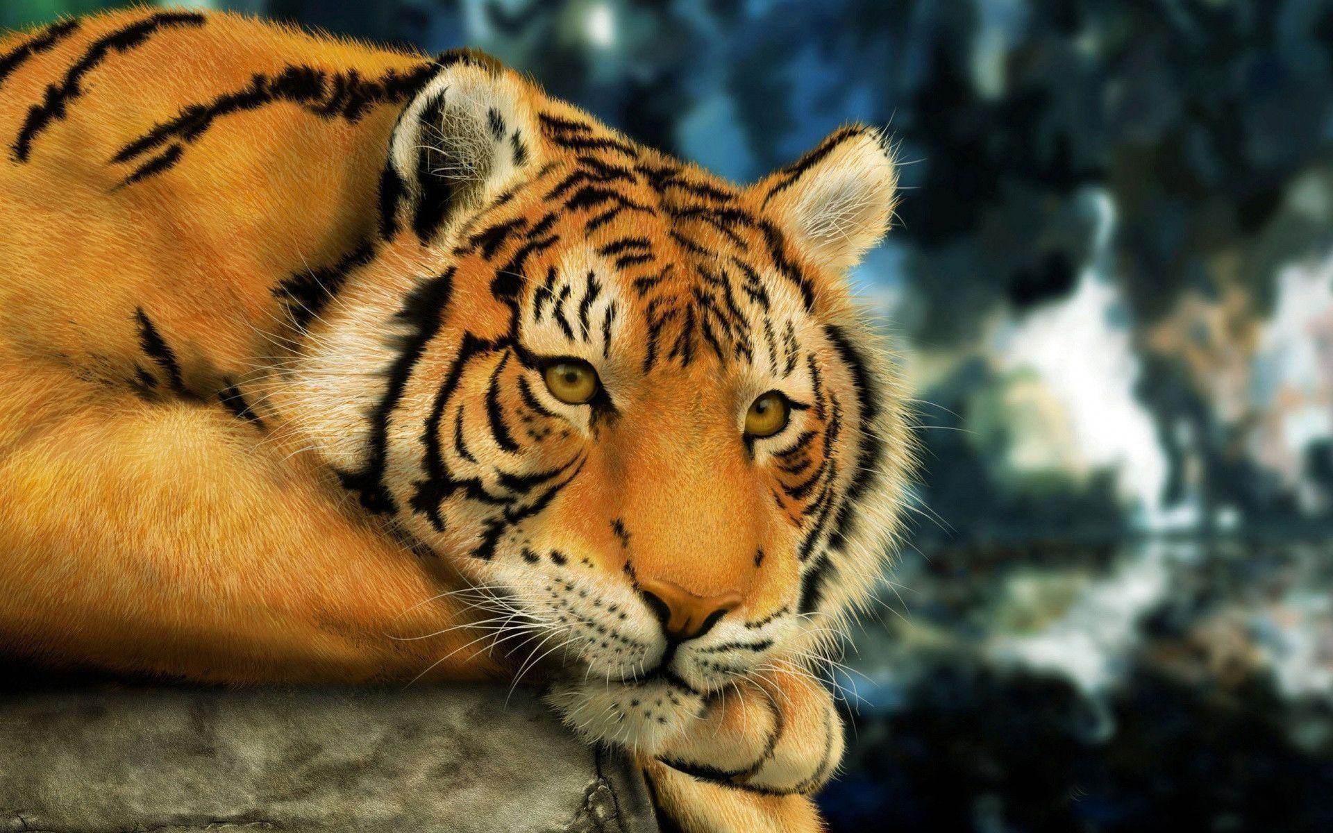 Detroit <b>Tigers Desktop Wallpaper</b> 1920×1080 – WallpaperSafari
