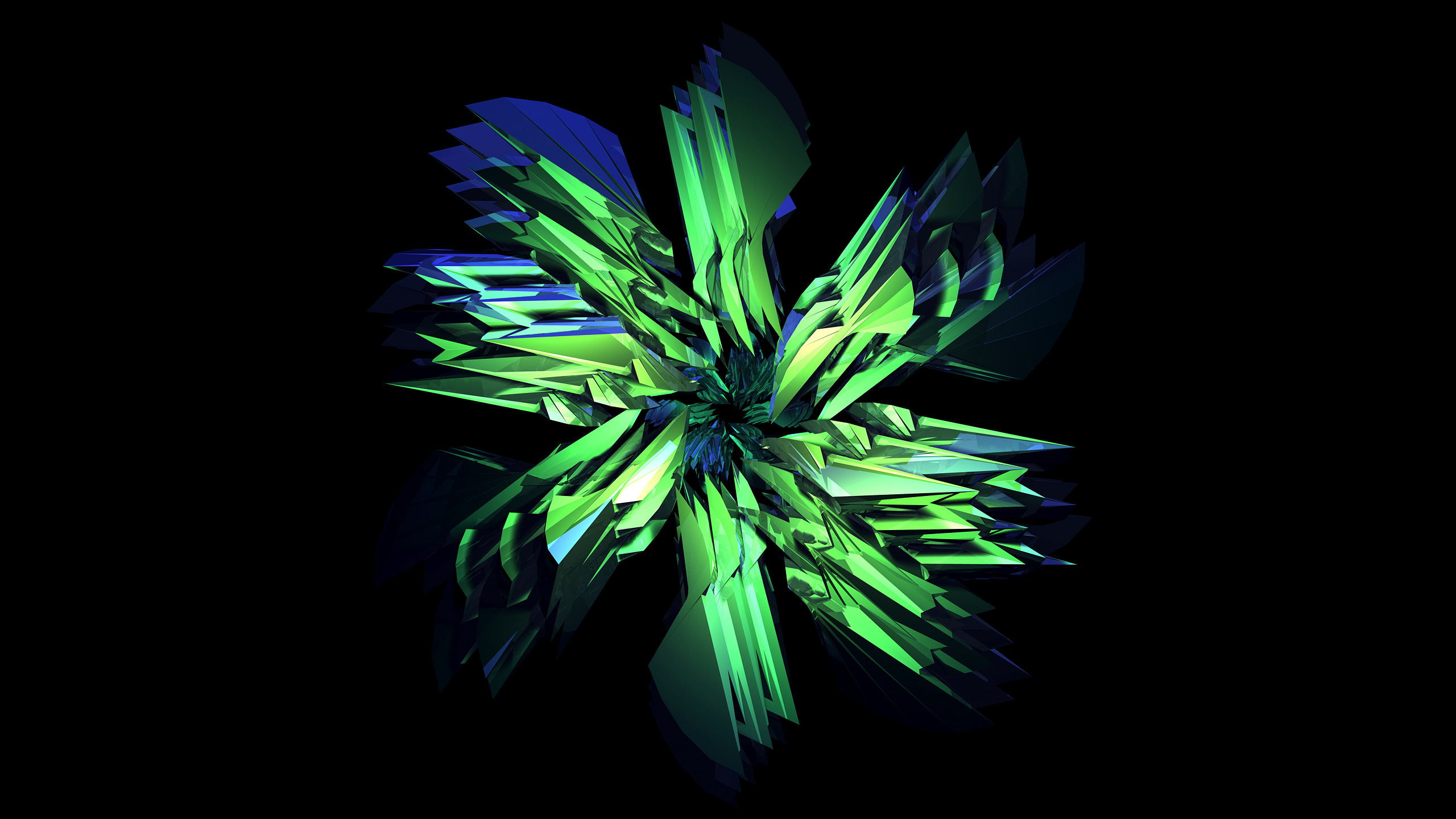 FACETS – Seahawks – 238/365 (2013)