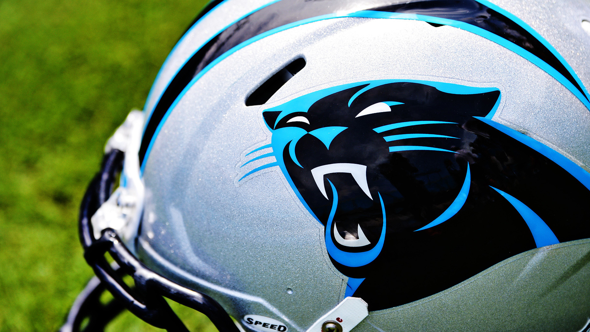 Carolina Panthers Wallpapers Images Photos Pictures. 17 …
