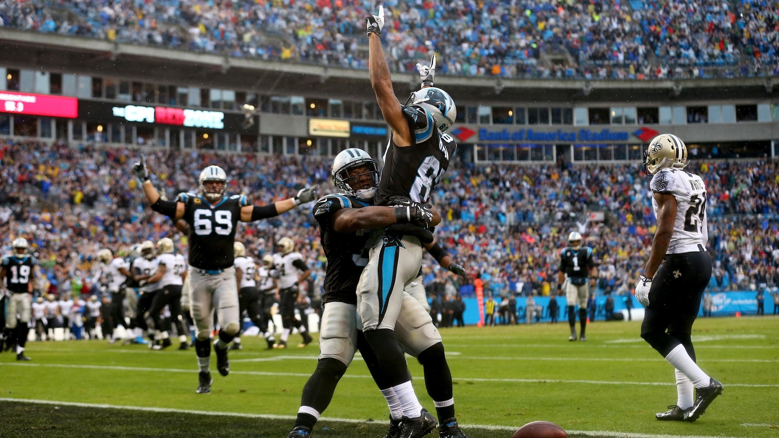 Winning, American Football, Sports, Nfl, Carolina Panthers Nfl Winning, Carolina  Panthers