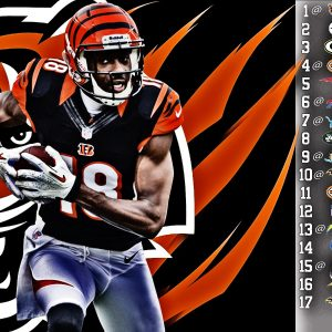 Cincinnati Bengals Wallpaper and Screensavers
