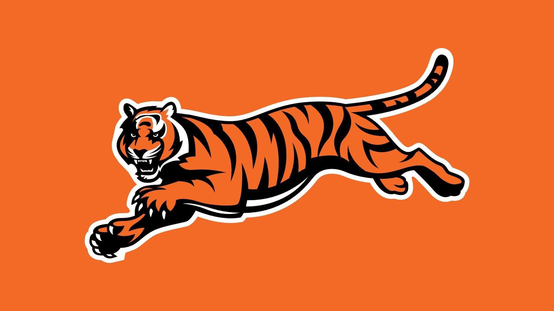 HD Wallpaper   Background ID:248698. Sports Cincinnati Bengals