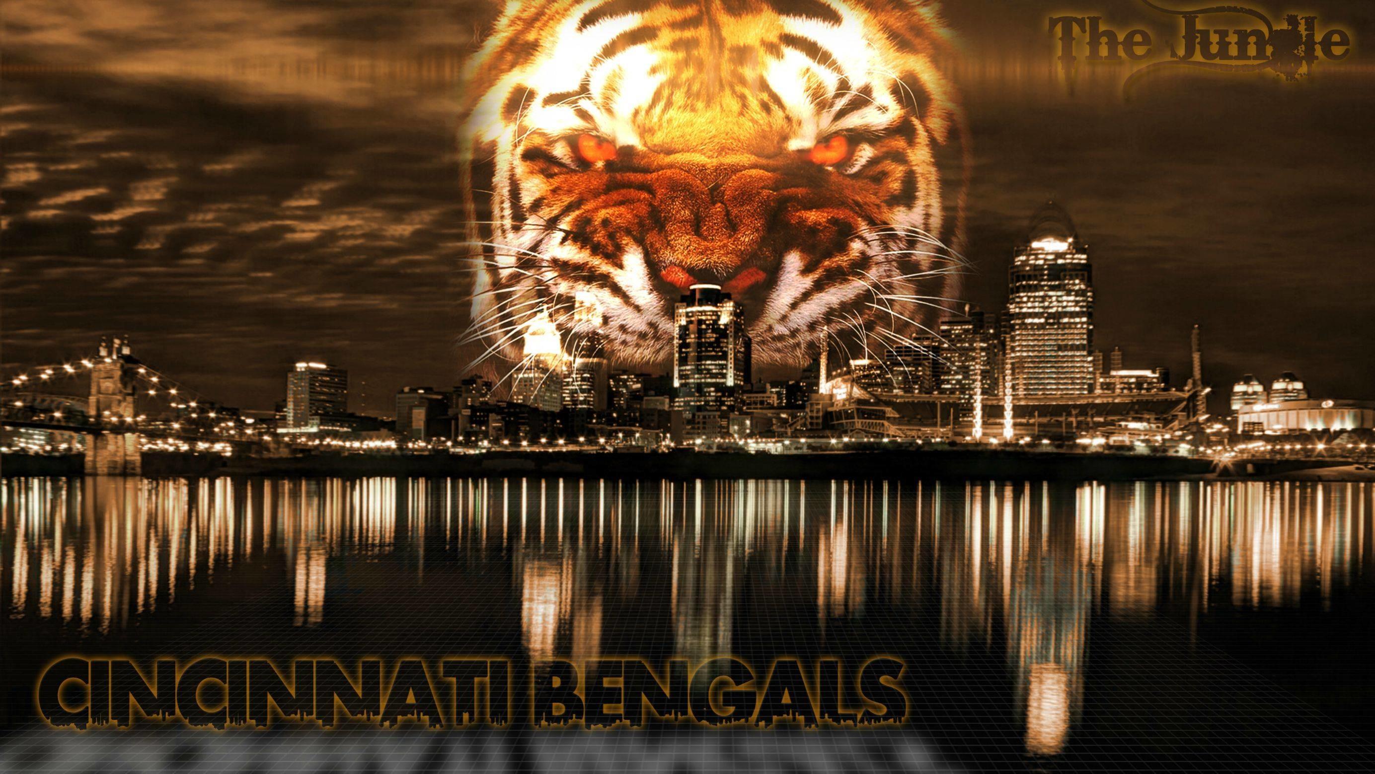 Filename: Cincinnati-Bengals-Picture.jpg
