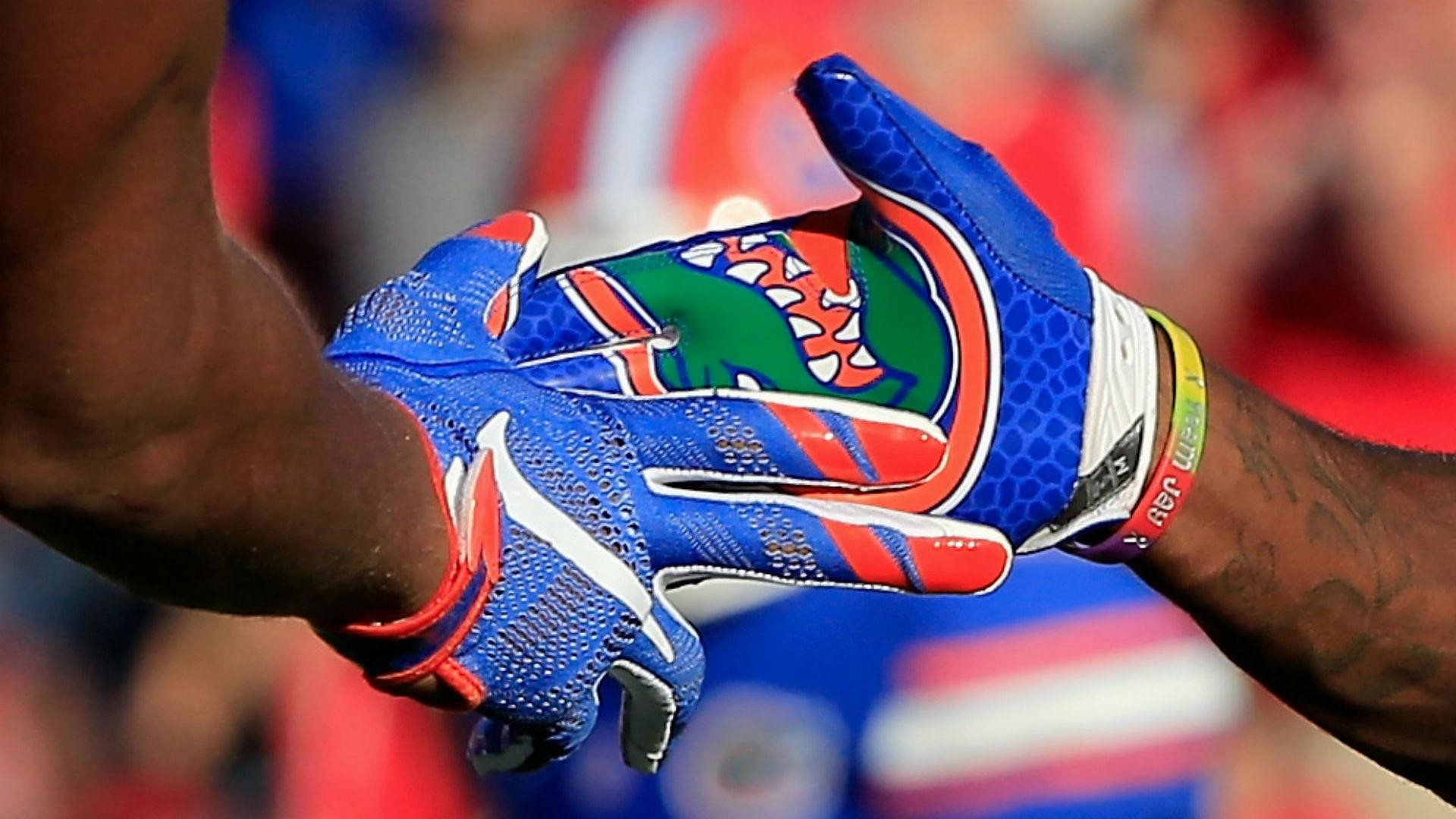 … florida gators backgrounds page 2 of 3 wallpaper wiki …