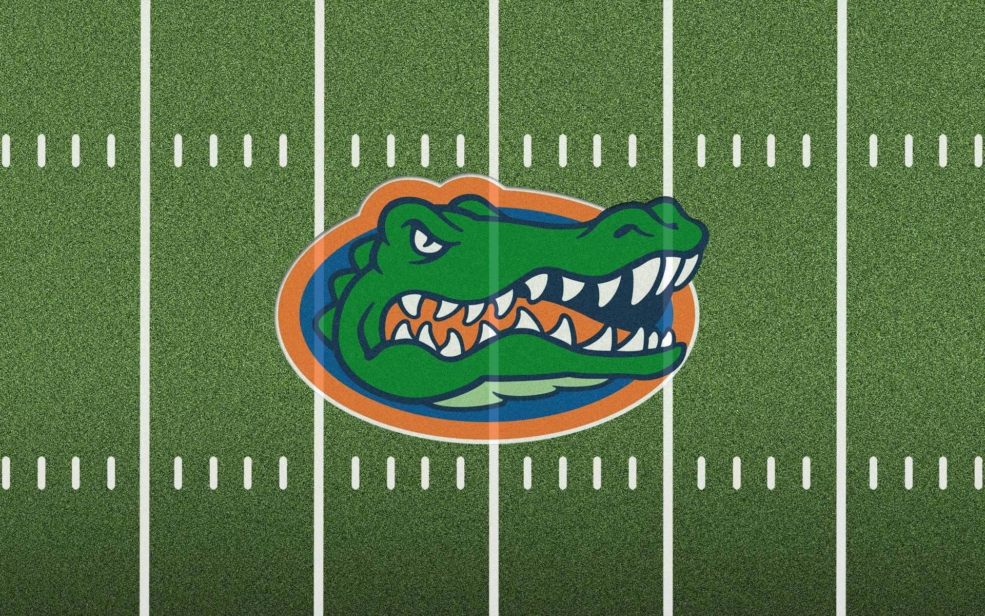 American Football Field Backgrounds Florida Gators Football .