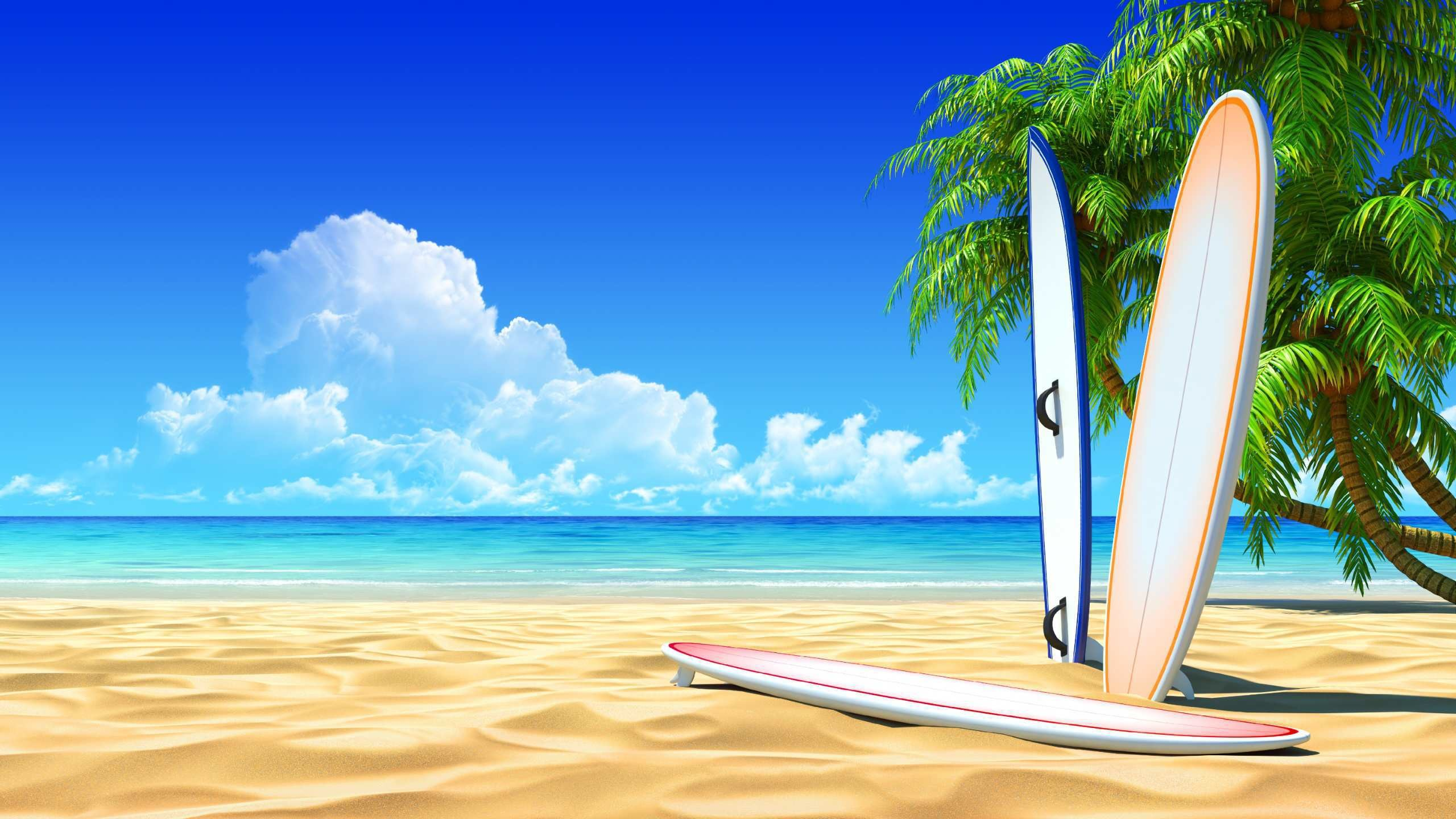 Surfing Wallpapers and Screensavers