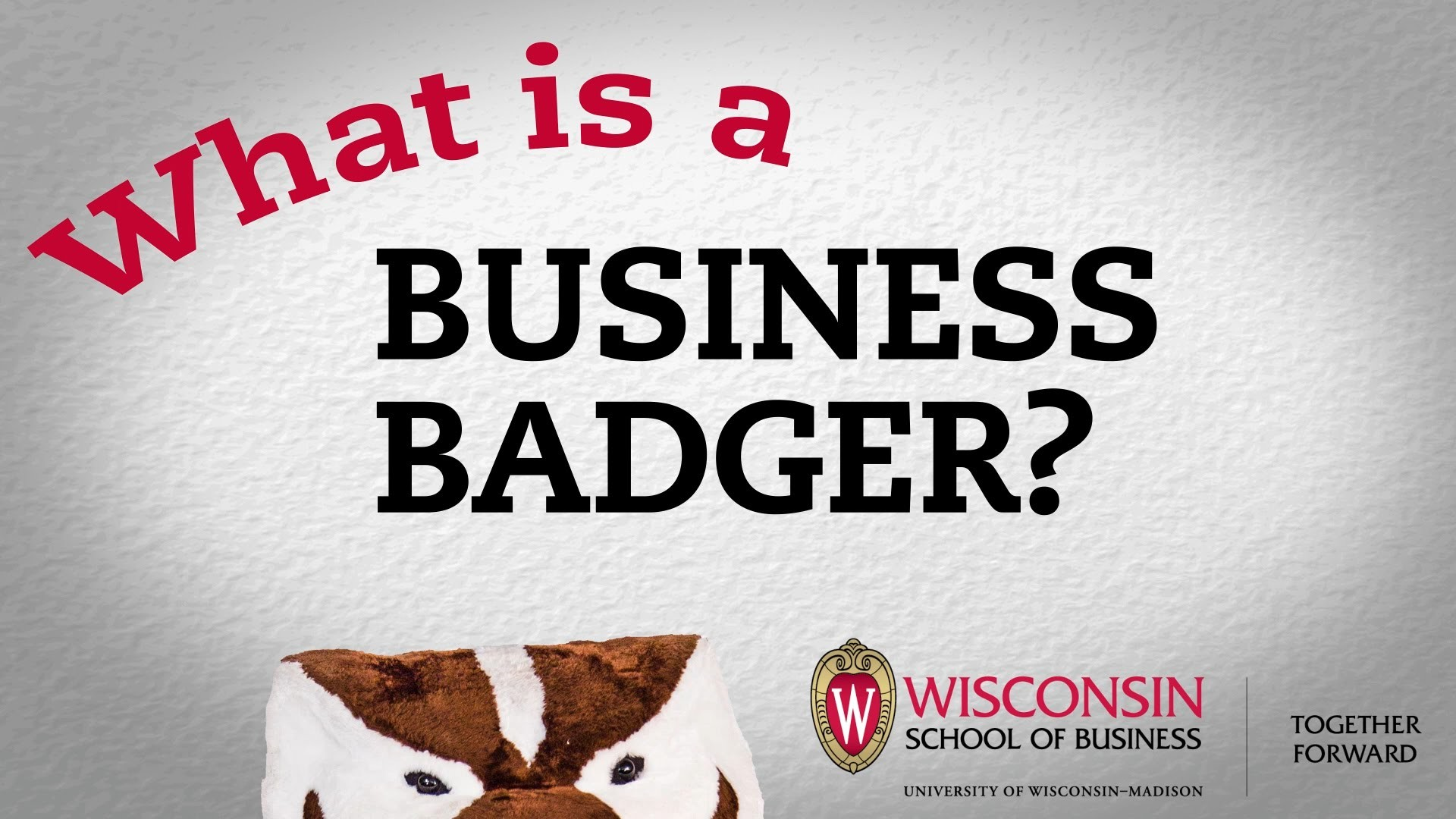 What is a Business Badger?