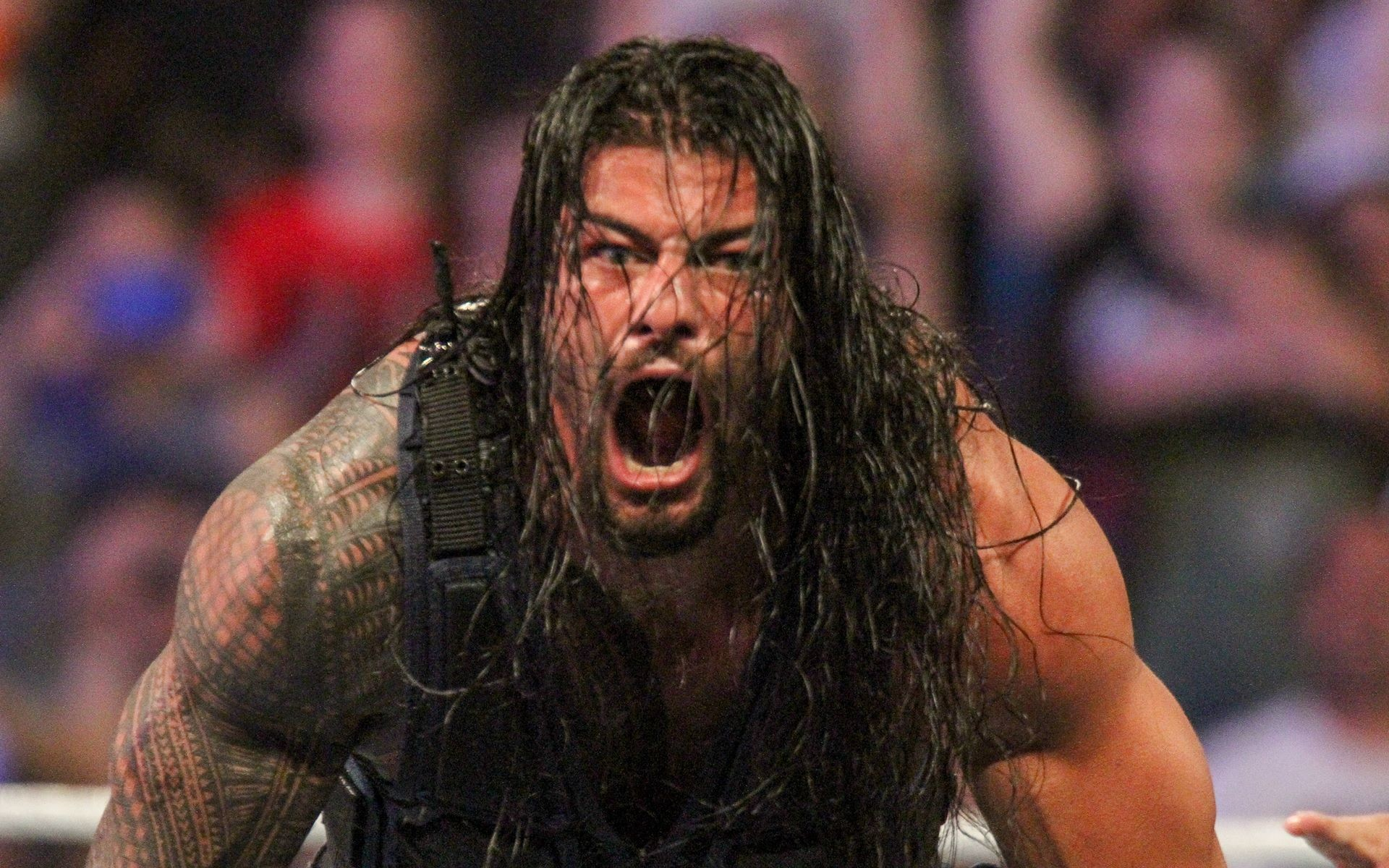 WWE Superstar Roman Reigns Latest HD Wallpapers