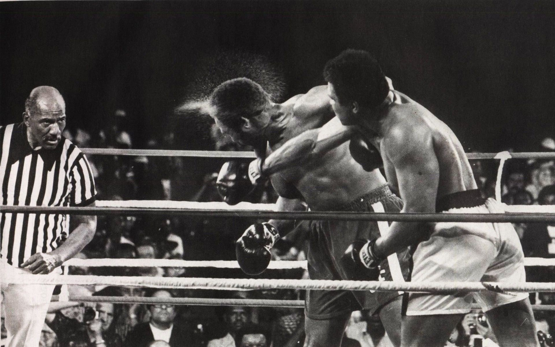 Wallpaper Boxing, muhammad ali, ring desktop wallpaper » Sports .