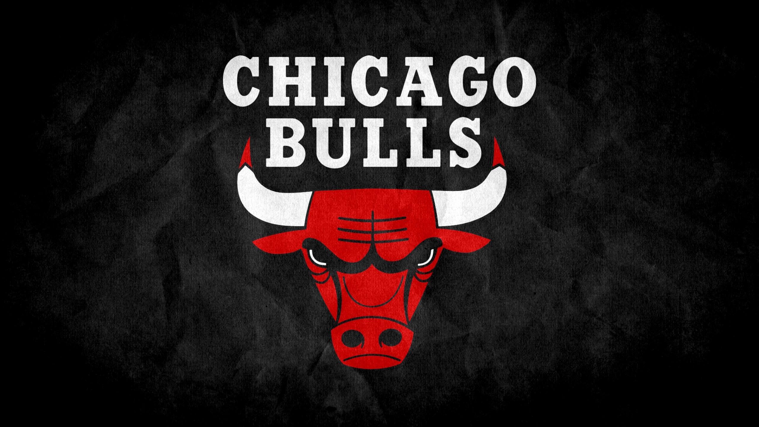 Wallpaper chicago bulls, 2015, logo