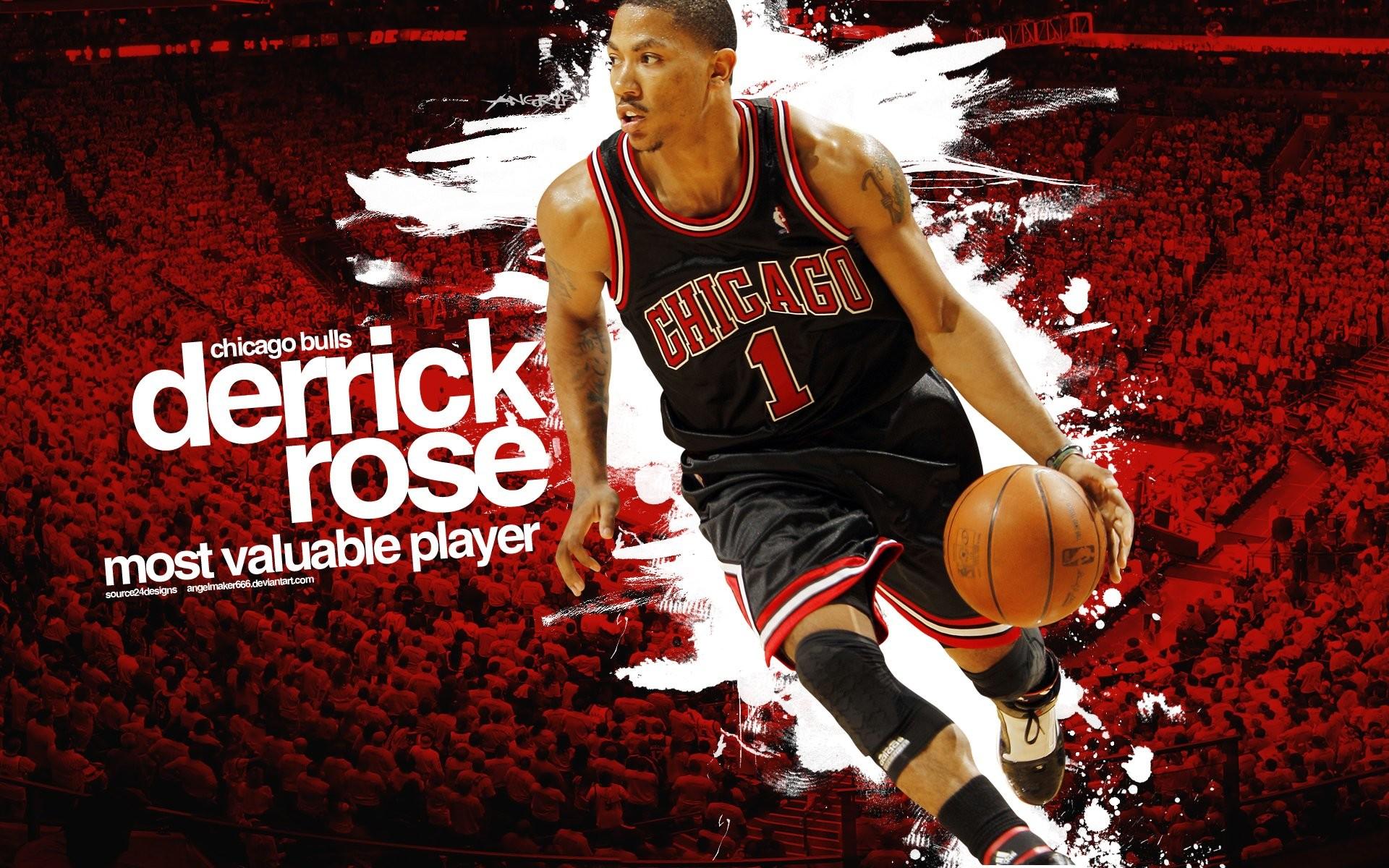 Chicago Bulls Rose; chicago bulls logo