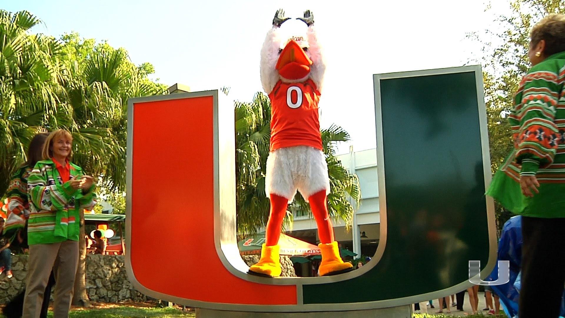 University of Miami Wallpaper University of Miami Unveiled