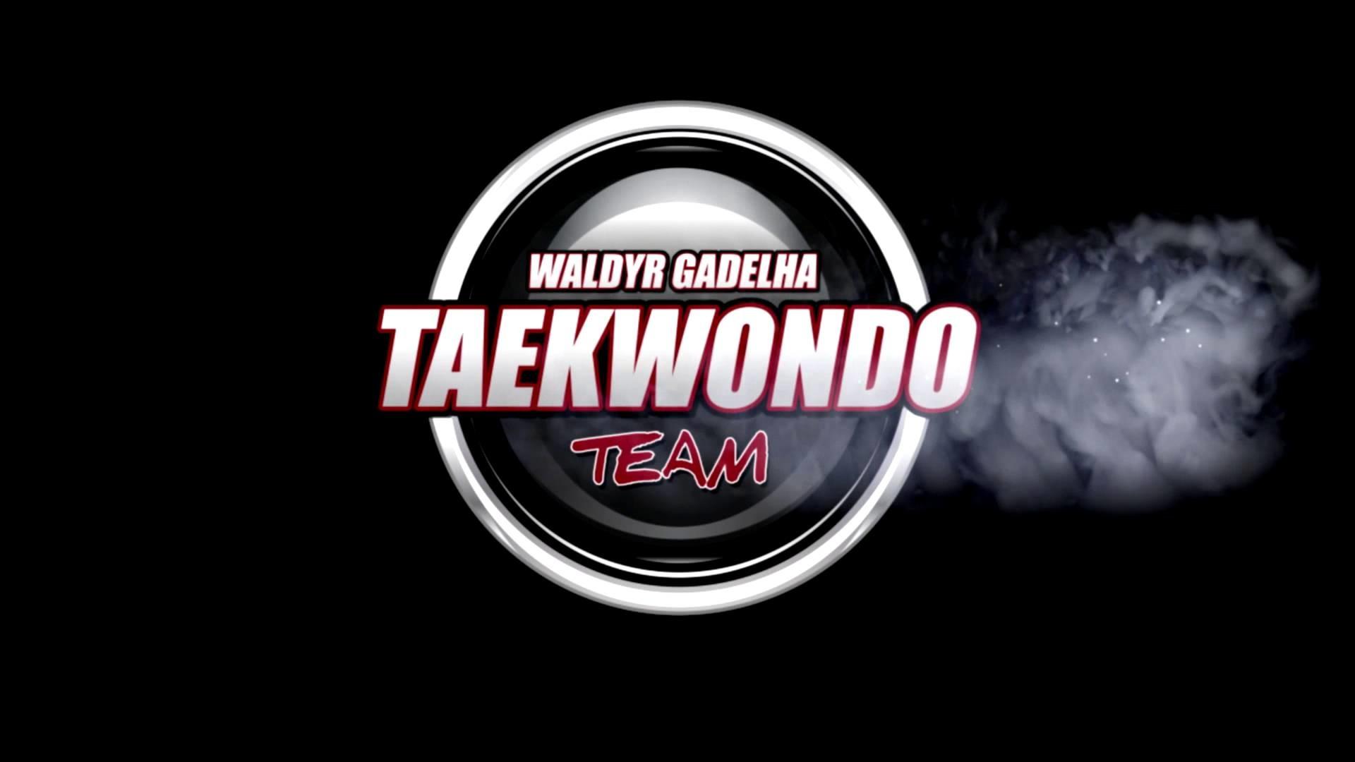 WALDYR GADELHA TAEKWONDO TEAM LOGO OFICIAL