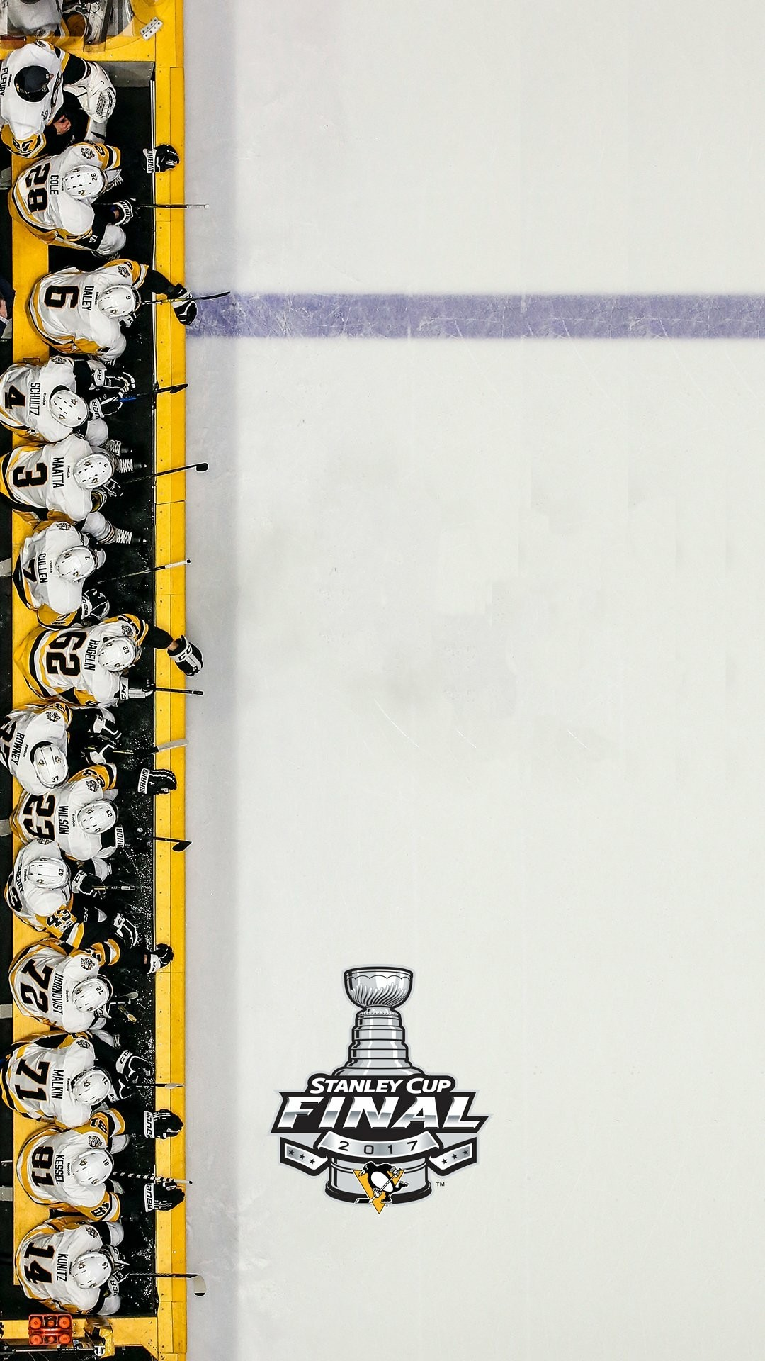 Pittsburgh Penguins Stanley Cup Champions Wallpaper