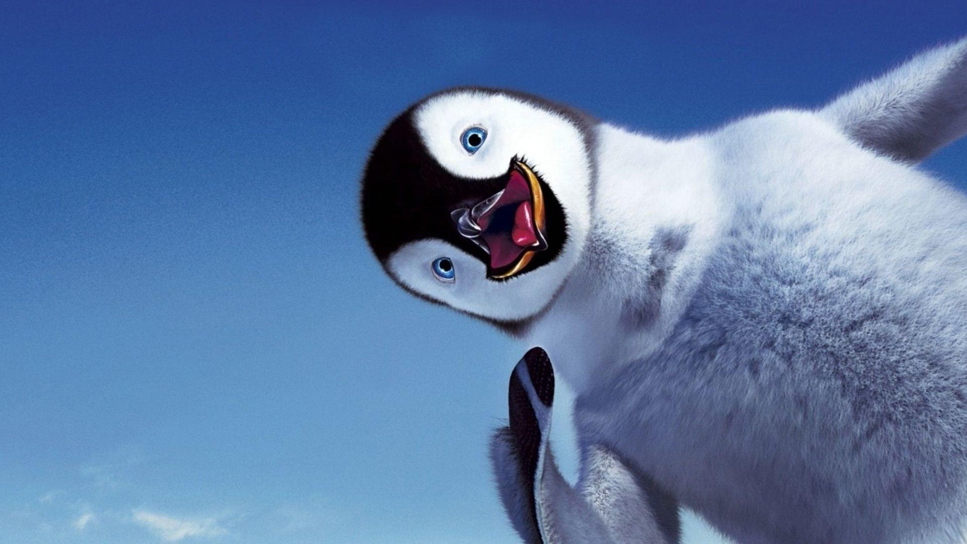 Cute Child Penguin Wallpaper Desktop